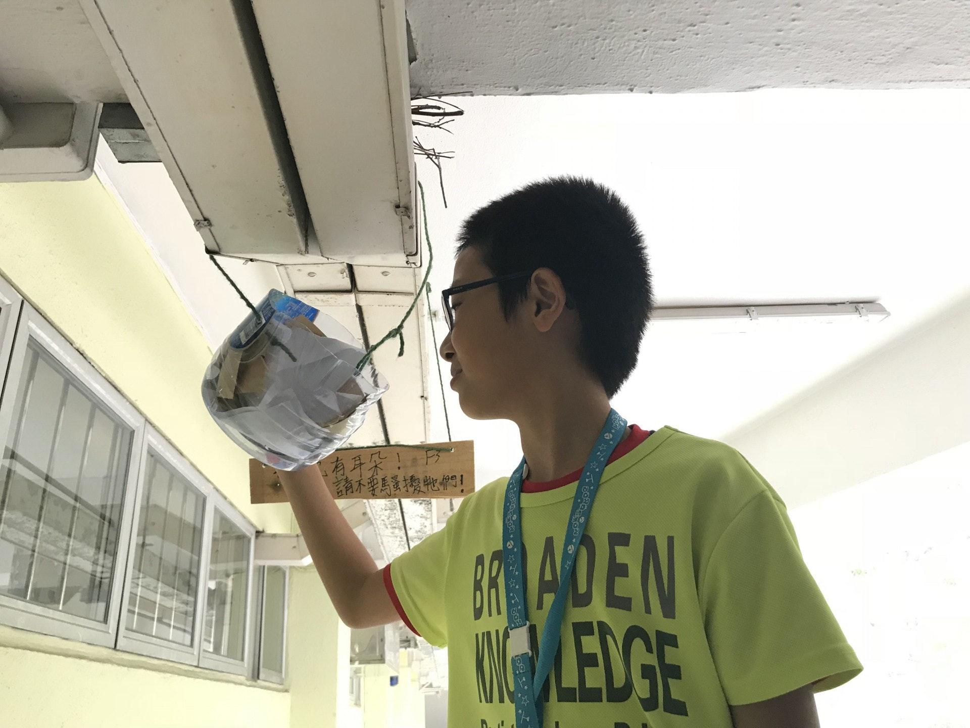 5年級生郭淦權亦表示,目睹雀仔可以繁殖下一代很開心,希望保護到牠們。(鄧穎琳攝)