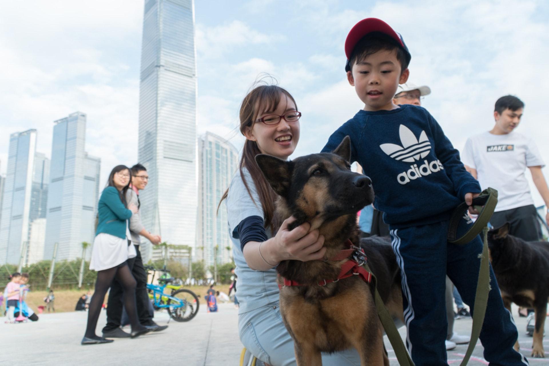 救狗之家的Eva指有非法繁殖場在修例繼續運作,期望準狗主可以領養代替購買。(資料圖片)