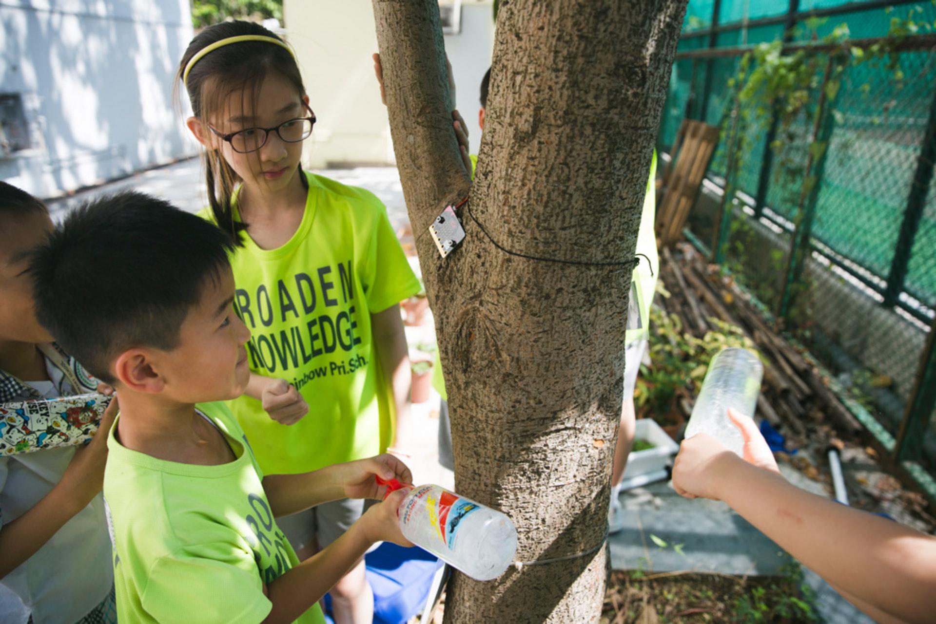 樹木沒有反應,於是學生們使用水樽開始「攻擊」。(黃寶瑩攝)