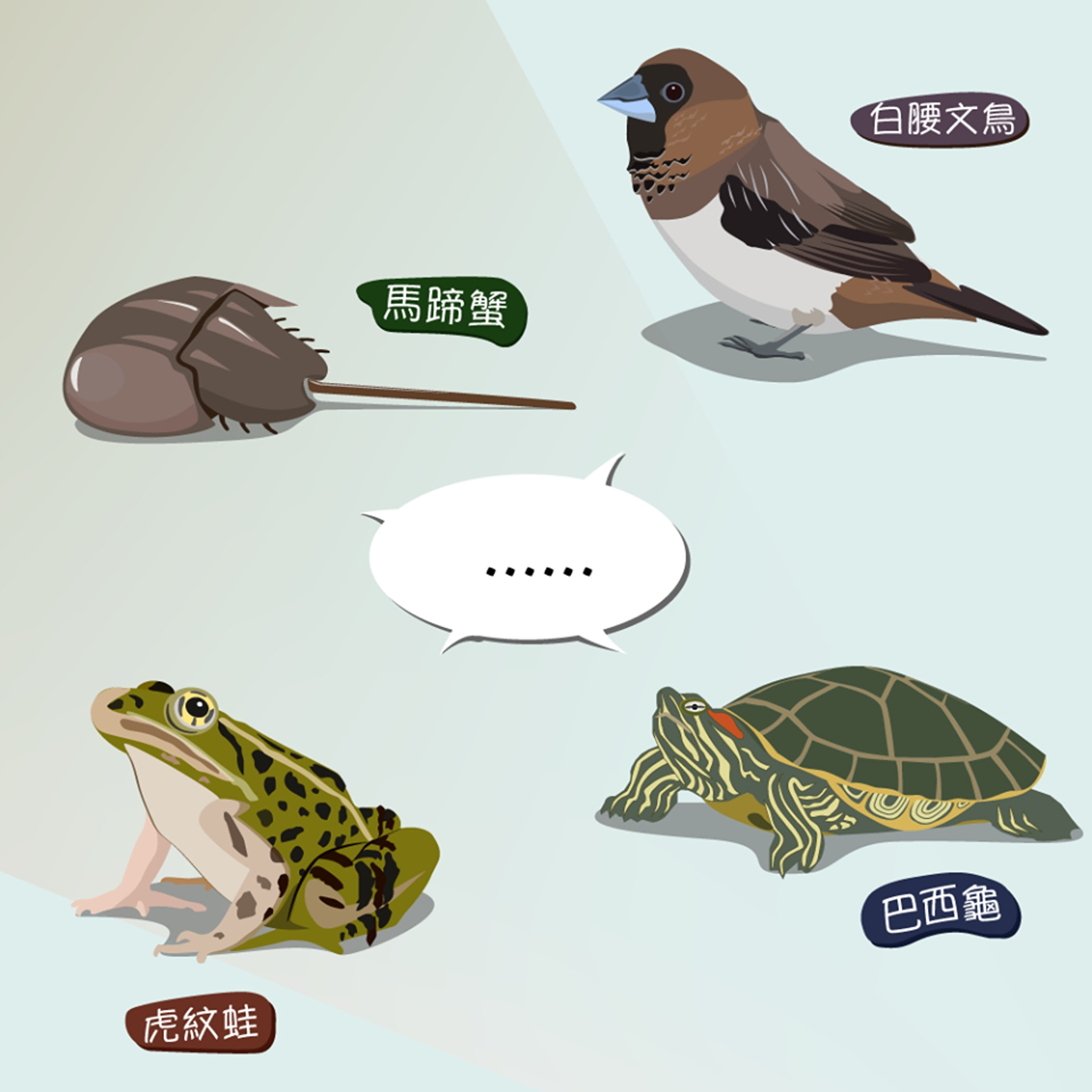 關注香港自然生態的網站「綠洲 Oasistrek」,在facebook專頁發佈10張自創插畫,解釋放生的壞影響。(漁農自然護理署圖片)