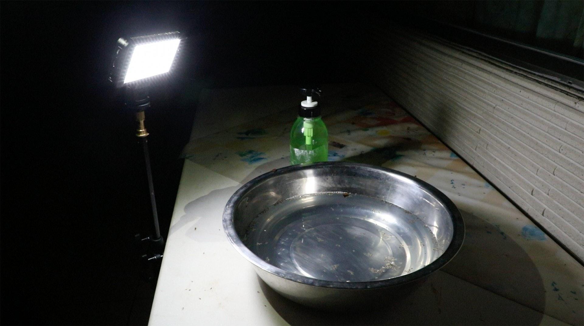 一盞燈加上一盆加入洗潔精的水,能否令飛蟲投水自盡。(岑卓熹攝)