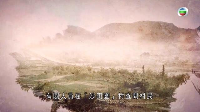 (電視畫面)