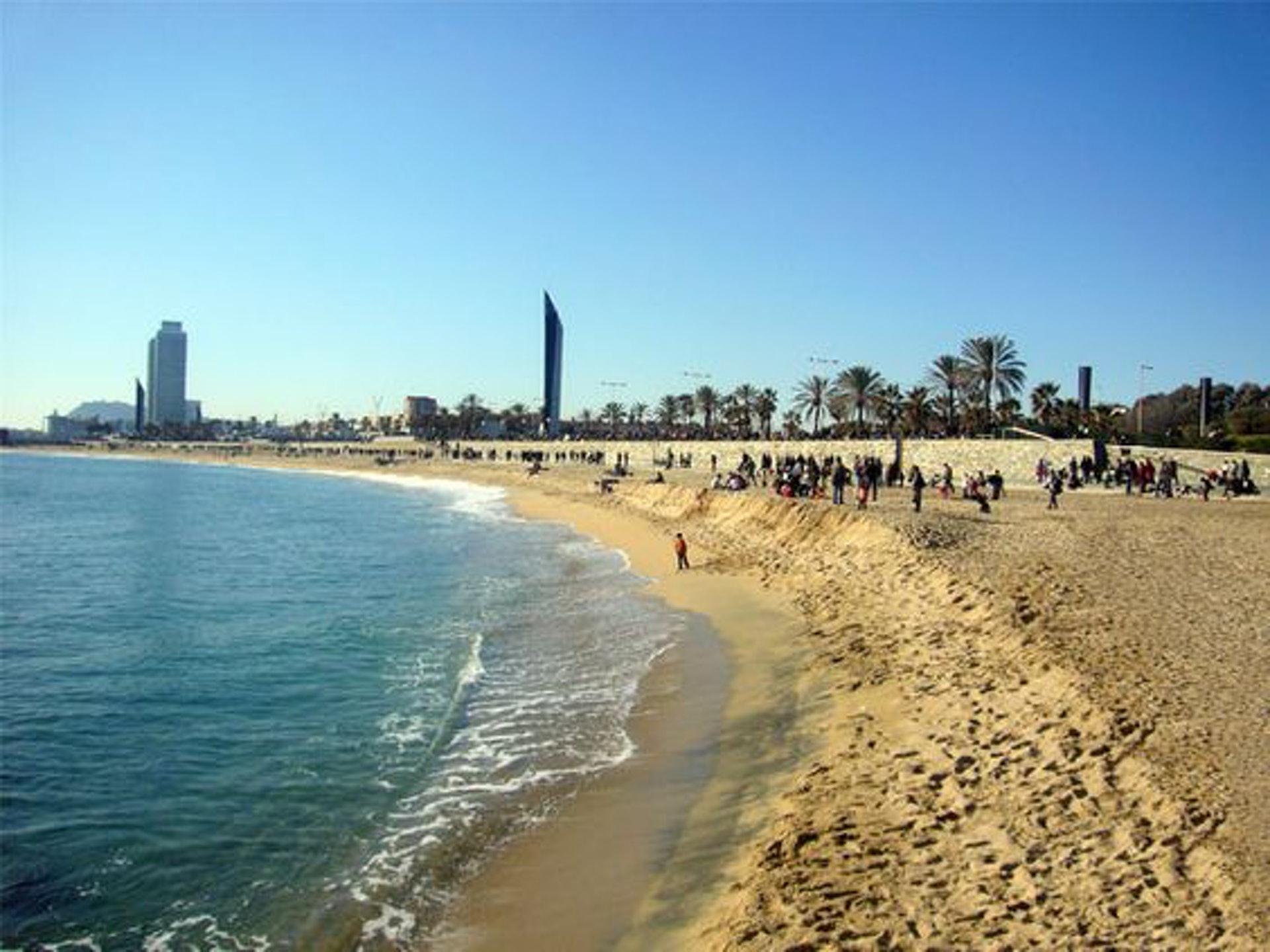 欣賞蔚藍地中海的Bogatell海灘(Pinterest)