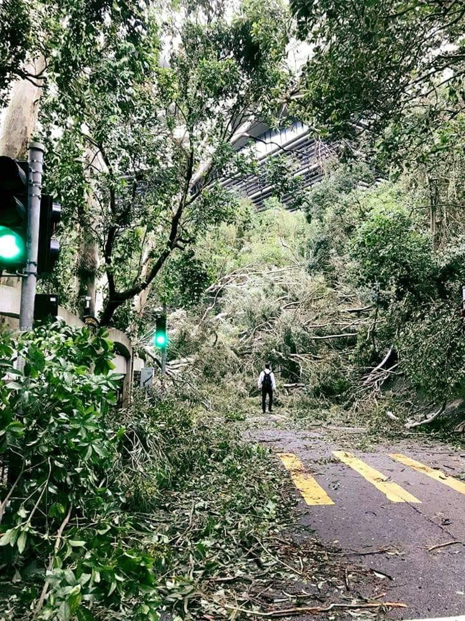 地球人已無法阻止香港人返工。有網民上載這張「絕望返工相」,被網友廣傳及改圖。(Facebook「Tai Po 大埔」群組圖片)
