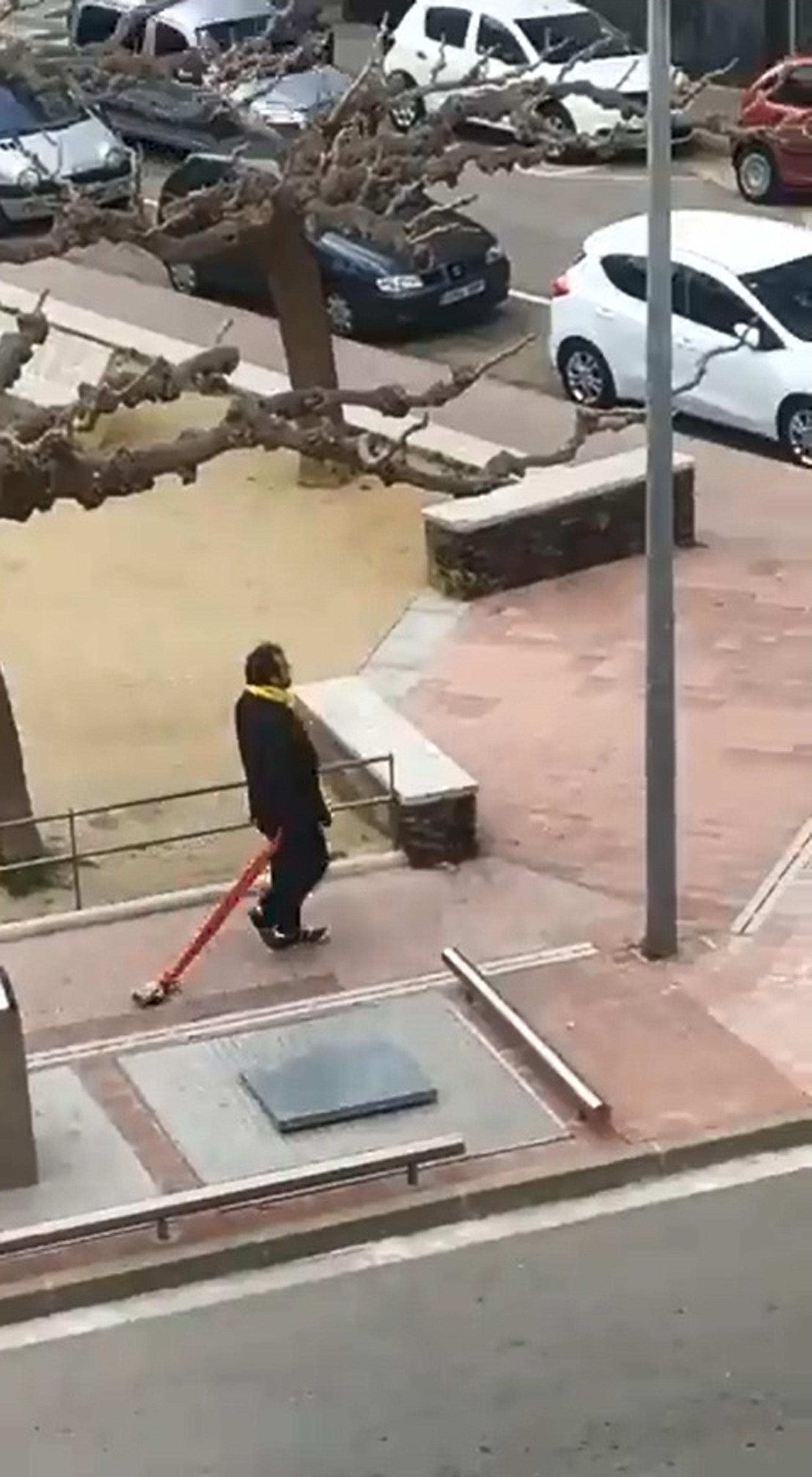 他拖着玩具狗在散步。(twitter)