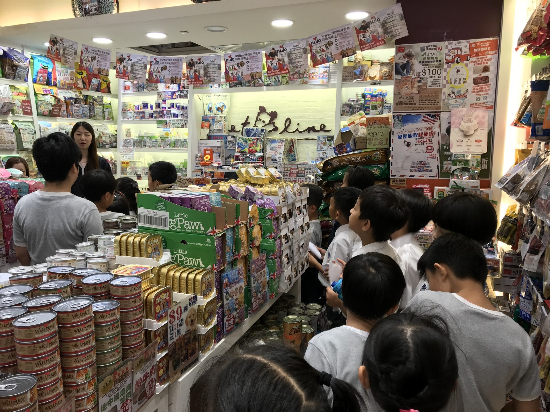 Pet Line 裡的店員為學生們介紹貓的日常用品 - 如食糧, 貓砂, 玩具等等。 學生在店裡四處探索一些適合建造貓 屋的物料及貓屋內應有的物品。(德萃小學圖片)