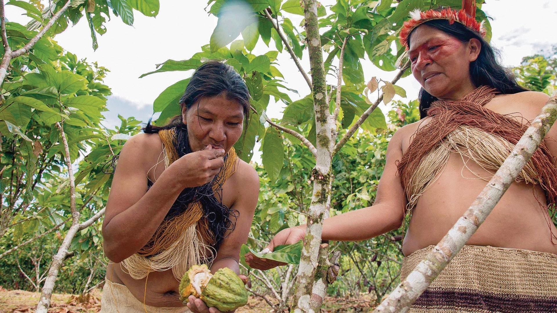 相比起「未接觸部落」,已與現代文明有持續接觸,被當地政府立法保障其利益的南美原住民部落為數更多。不過,這不代表他們能免於外界的侵擾,過着無憂無慮的生活。(VCG)
