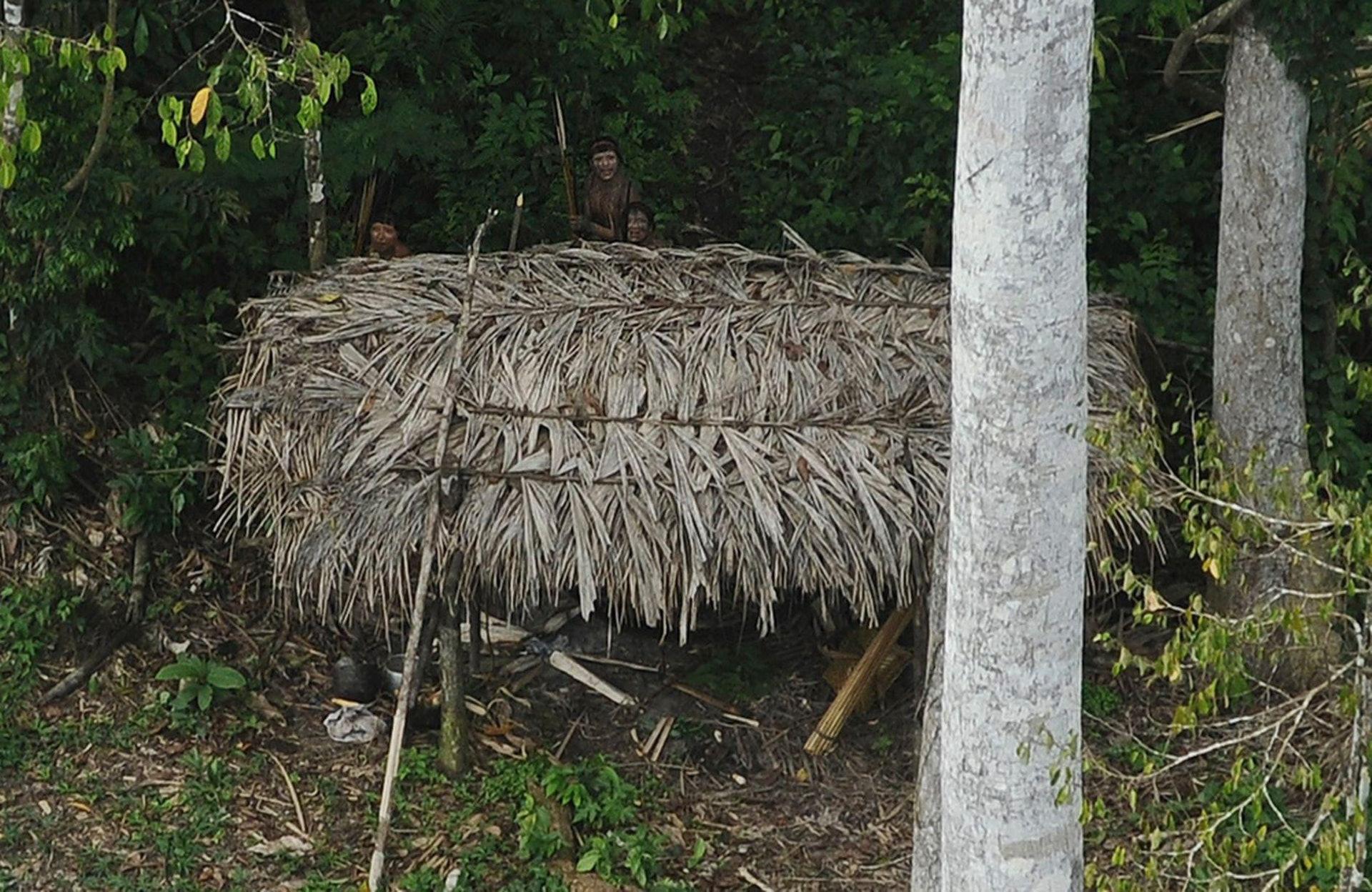 馬斯科皮洛人住在秘魯亞馬遜叢林地區的深處。(路透社)