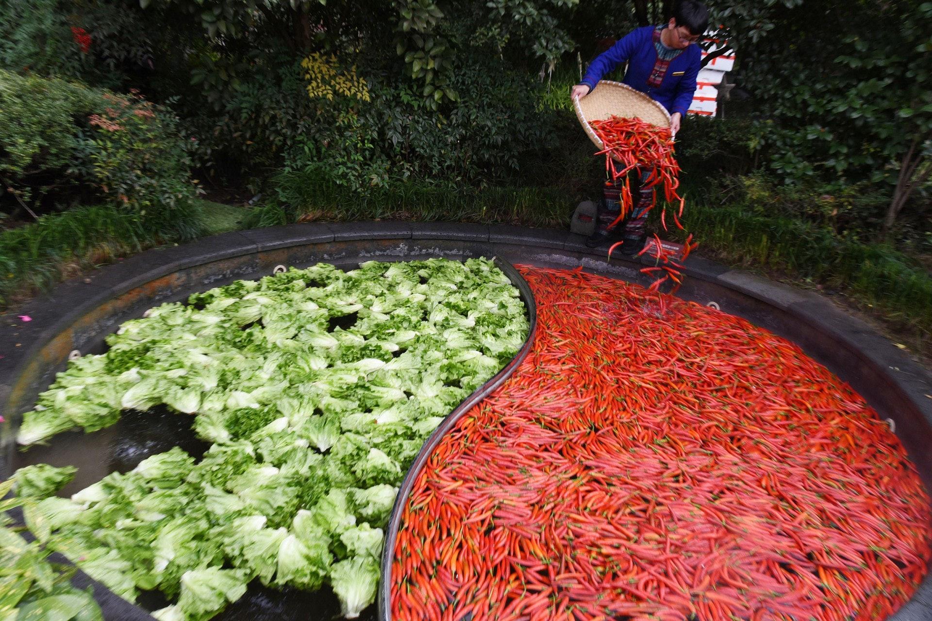 杭州一間酒店推出鴛鴦火鍋溫泉,讓旅客一邊浸泡一邊吃火鍋。(視覺中國)
