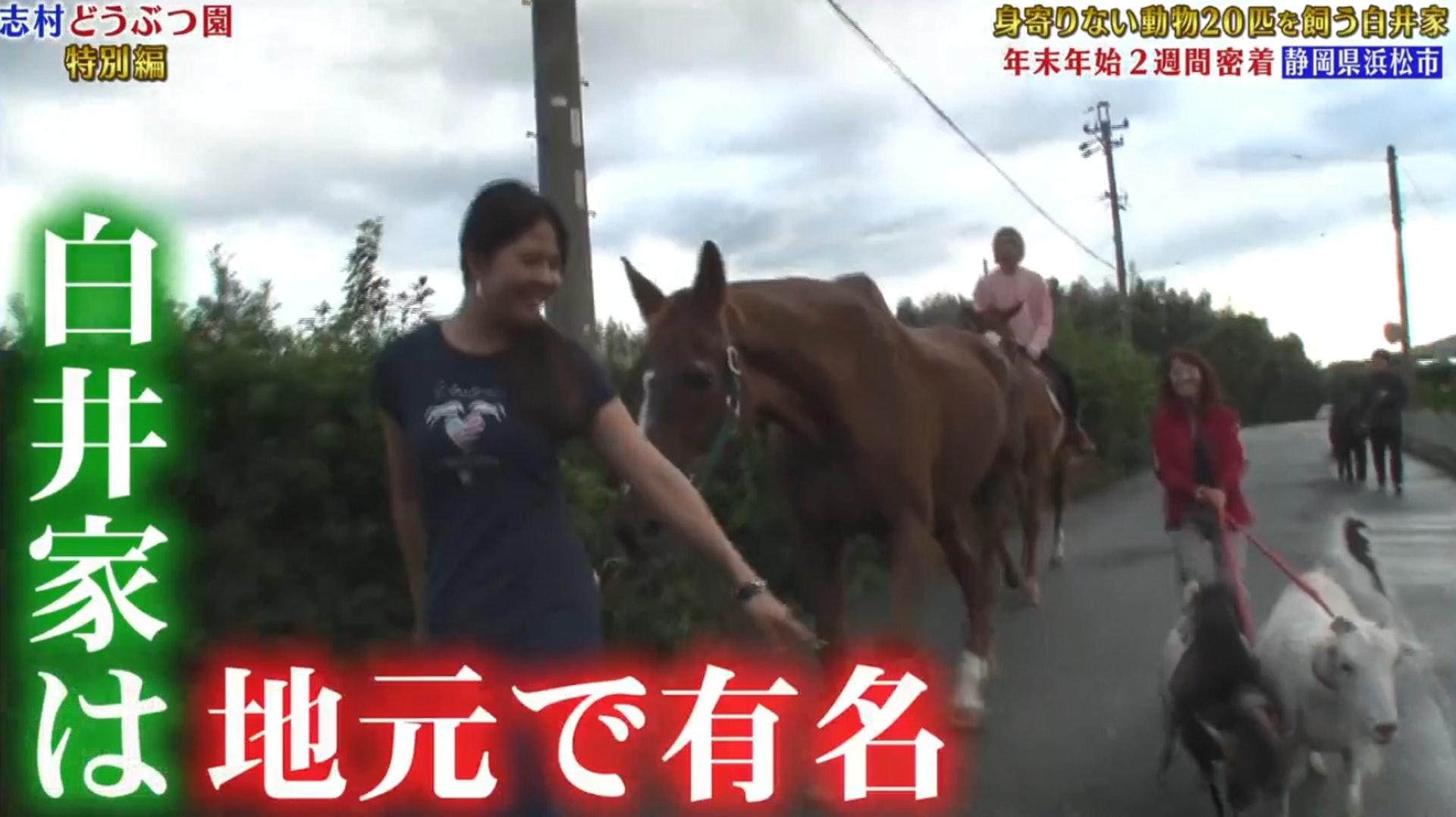 白井 家 動物園 志村