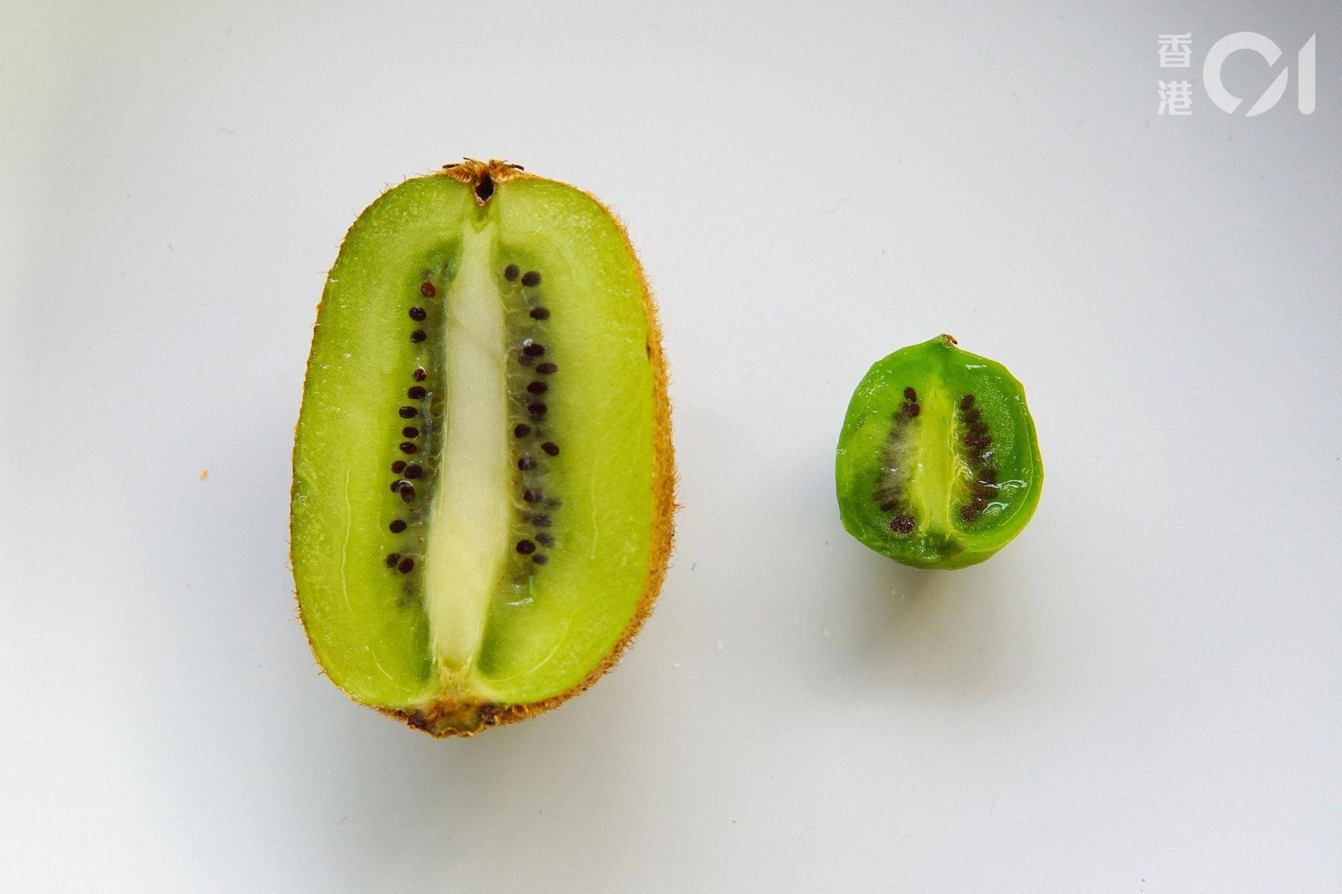 切開兩種水果後發覺內裡非常相似,都是綠色果肉和黑色的可食用果籽,奇異莓吃起來較腍和清甜,今次吃到的一點也不酸。