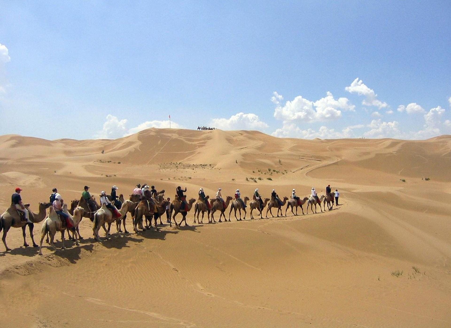 紐時報道稱,政府正在將沙漠中的農牧民外移,但很難證明此舉有助於控制沙漠化。(新華網資料圖)