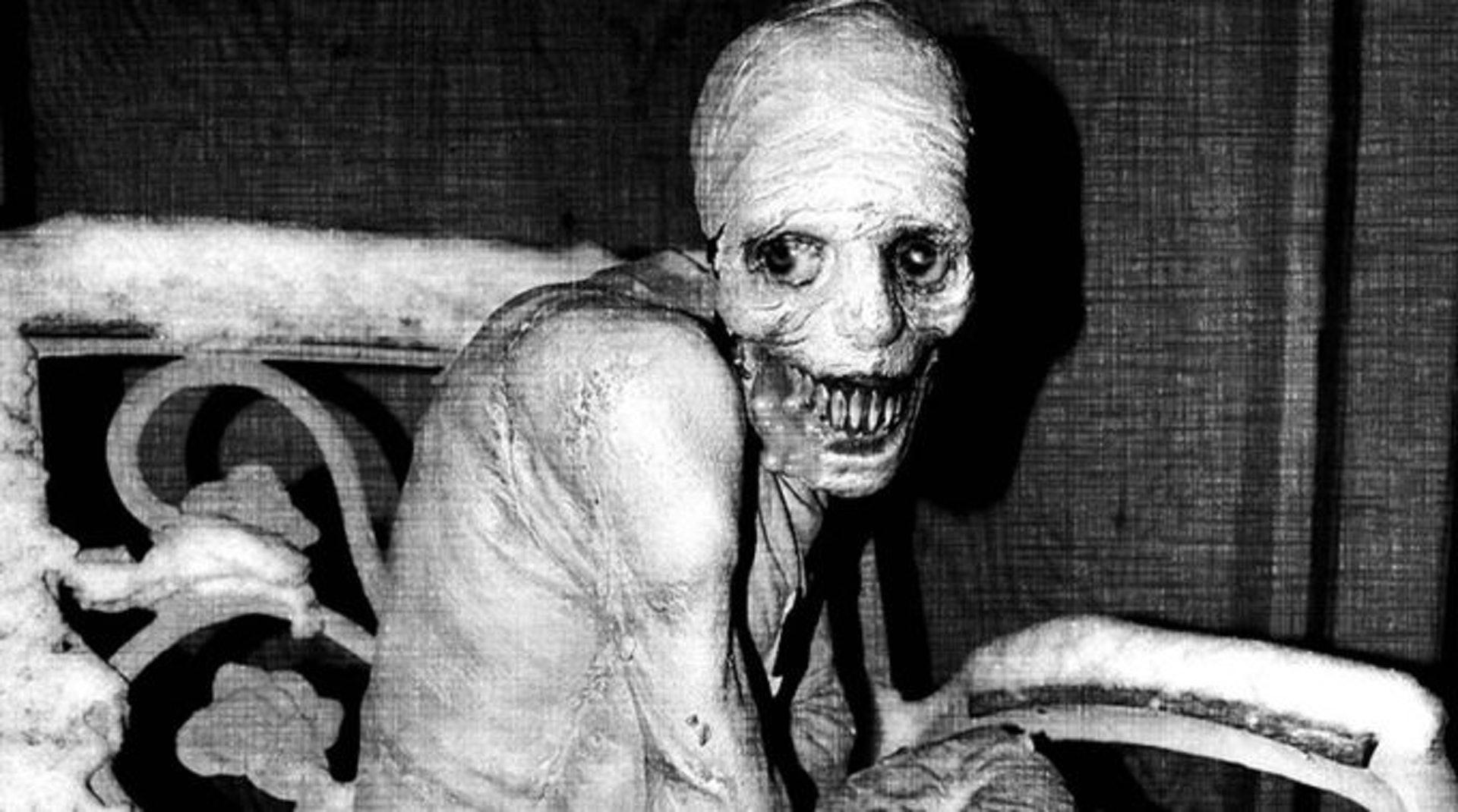 俄羅斯睡眠實驗的圖片搜尋結果
