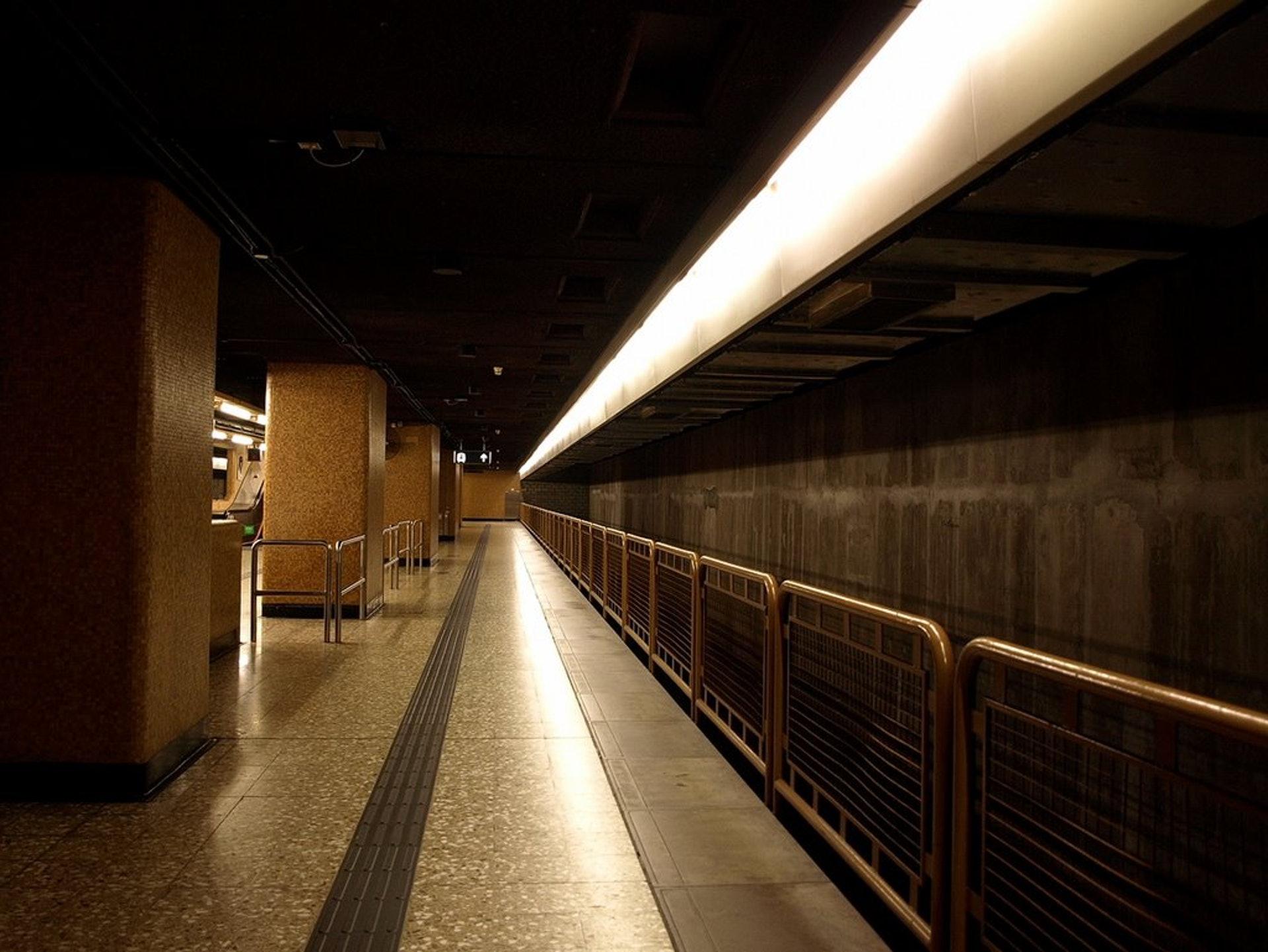 在上環站能通往已經荒廢的林士站。(網上圖片)