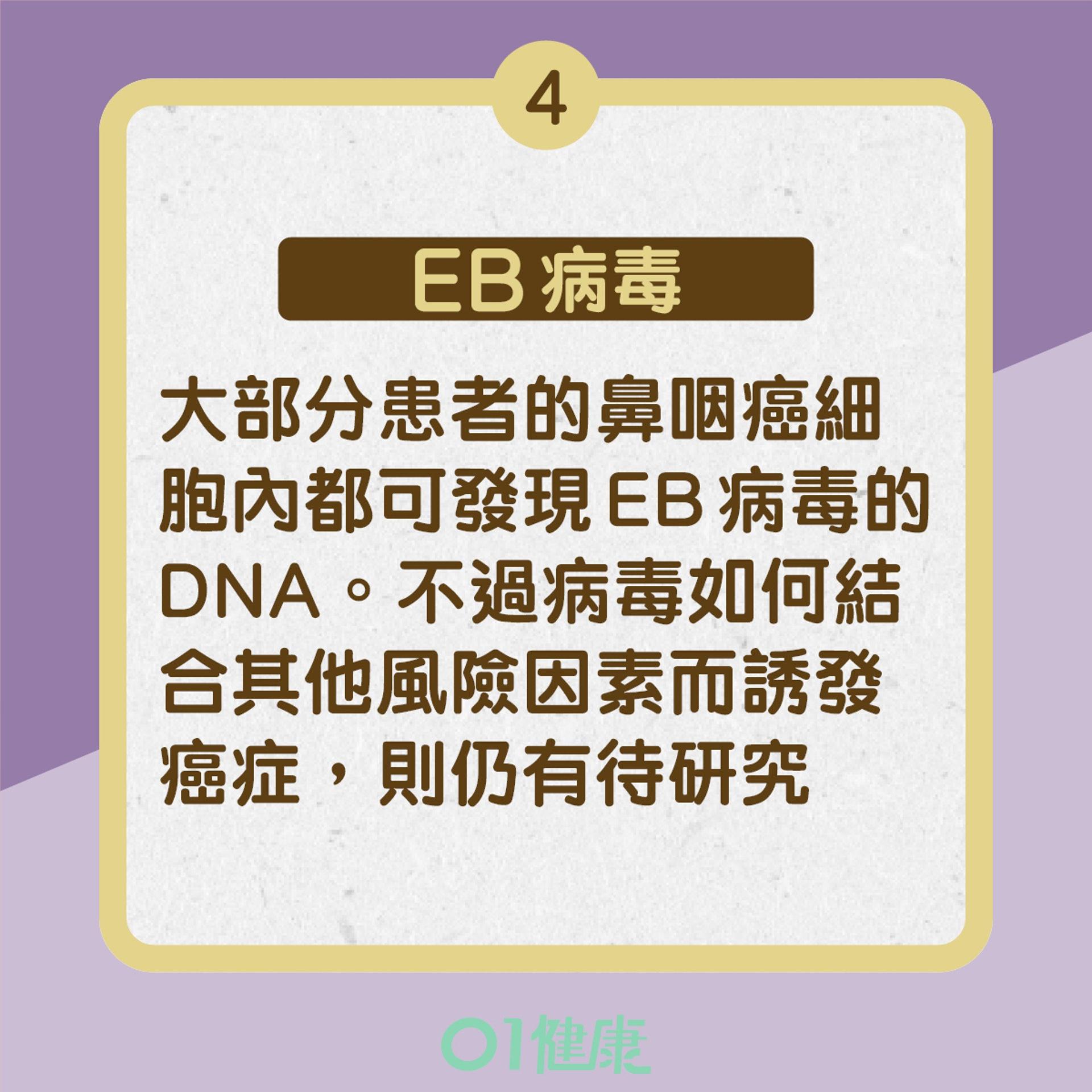鼻咽癌4大成因(01製圖)