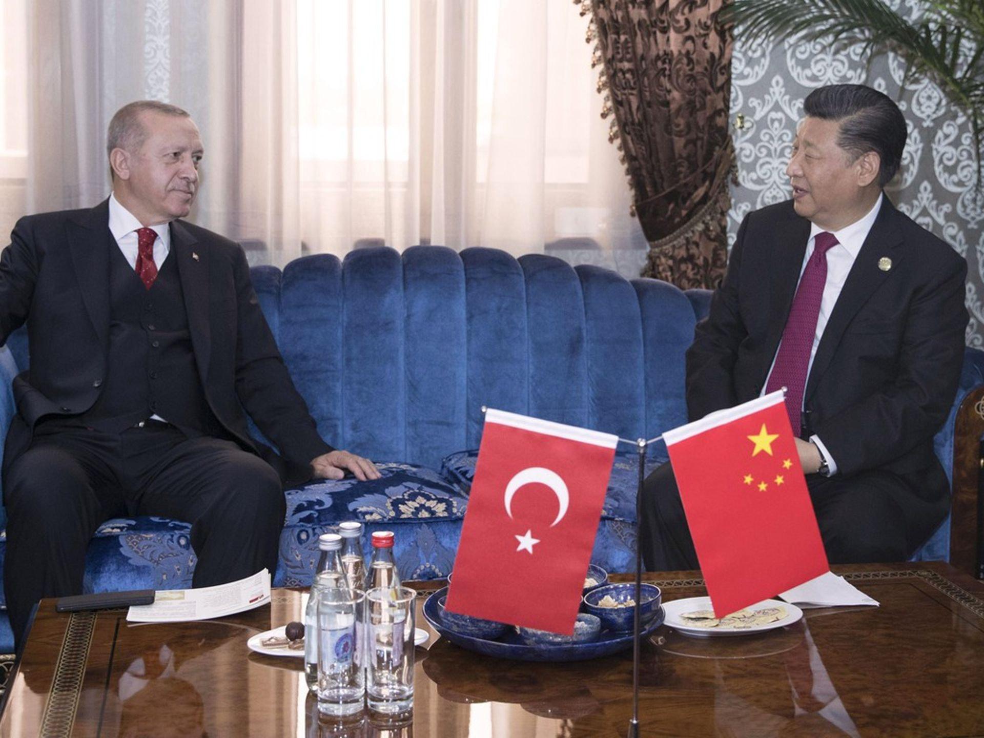 中国国家主席习近平于4月8日同土耳其总统埃尔多安(Recep Erdogan)通话时强调,病毒无国界、不分种族,中土双方要密切合作,加强协调。(新华社)