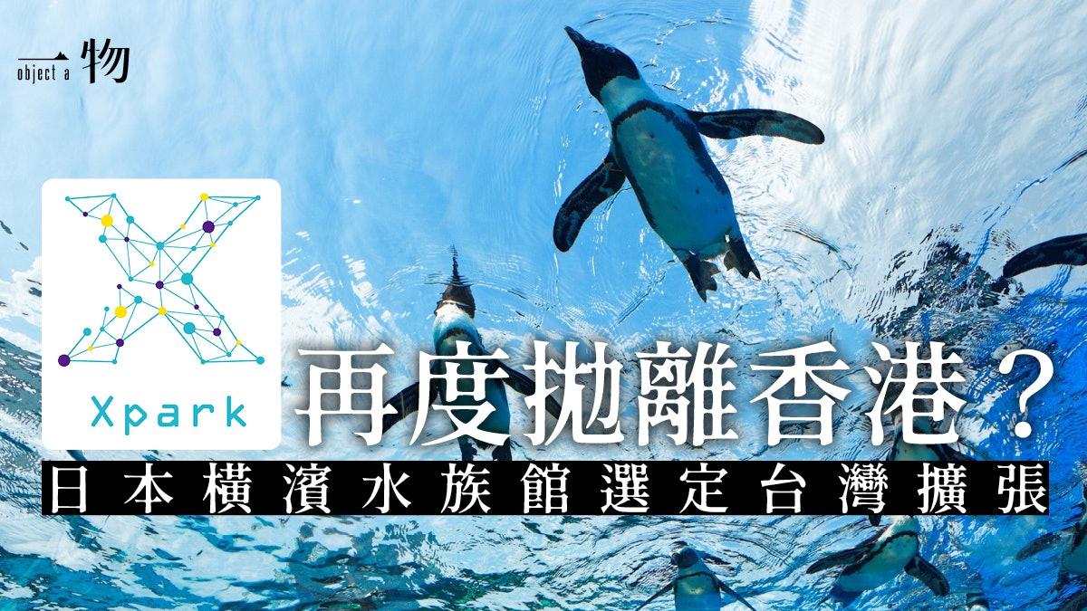 海洋公園完敗?】桃園開設橫濱水族館海外分館營造美麗水世界
