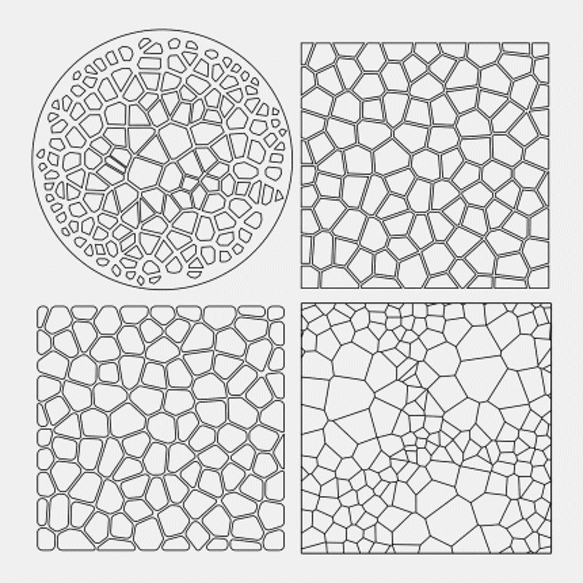 大自然中經常出現的Voronoi Diagram物體結構。(網上圖片)