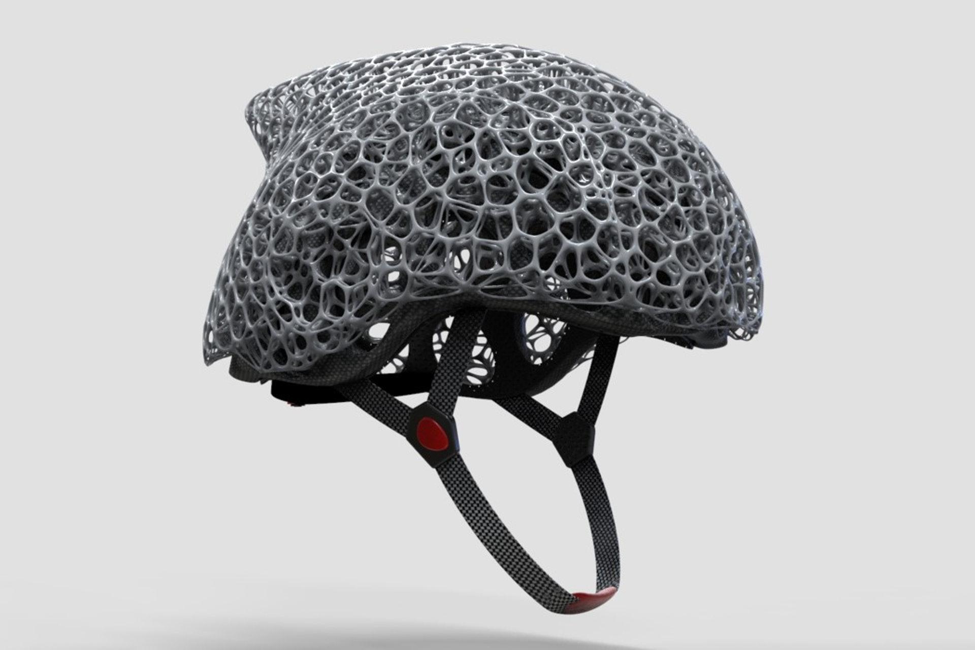 彷生物的頭盔外殼。(網上圖片)