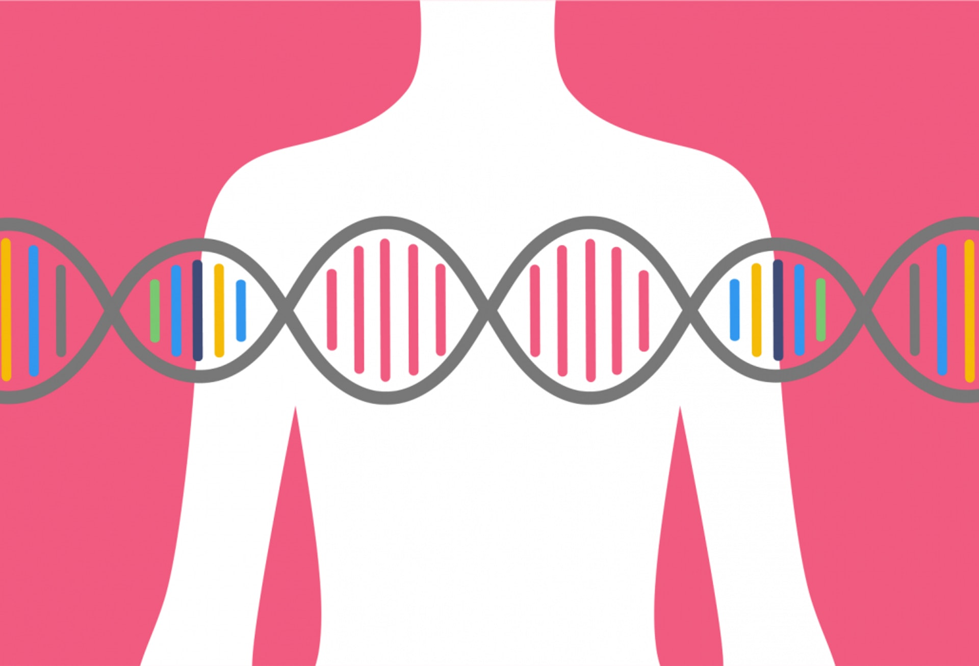 帶有遺傳性基因的女性,患上癌症的風險更高。(圖片:geneticliteracyproject.org)