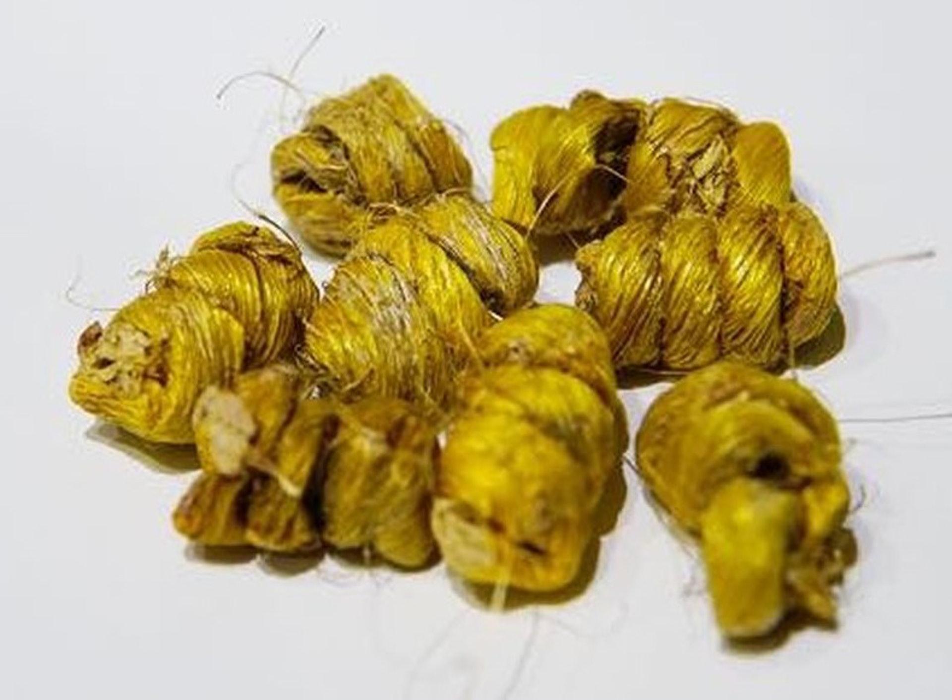 石斛比較適合於夏秋兩季飲用,特別是胃火偏盛,即常有口乾口渴口臭、噯氣、突然食慾較旺人士。(資料圖片)