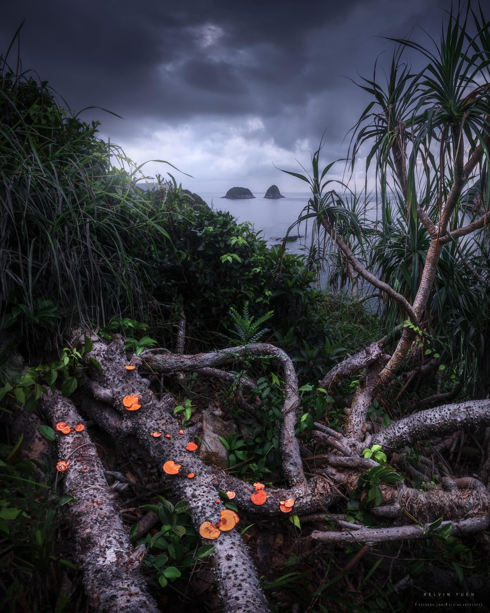 Kelvin鏡頭下的西貢海岸。(由受訪者提供/Kelvin Yuen攝)
