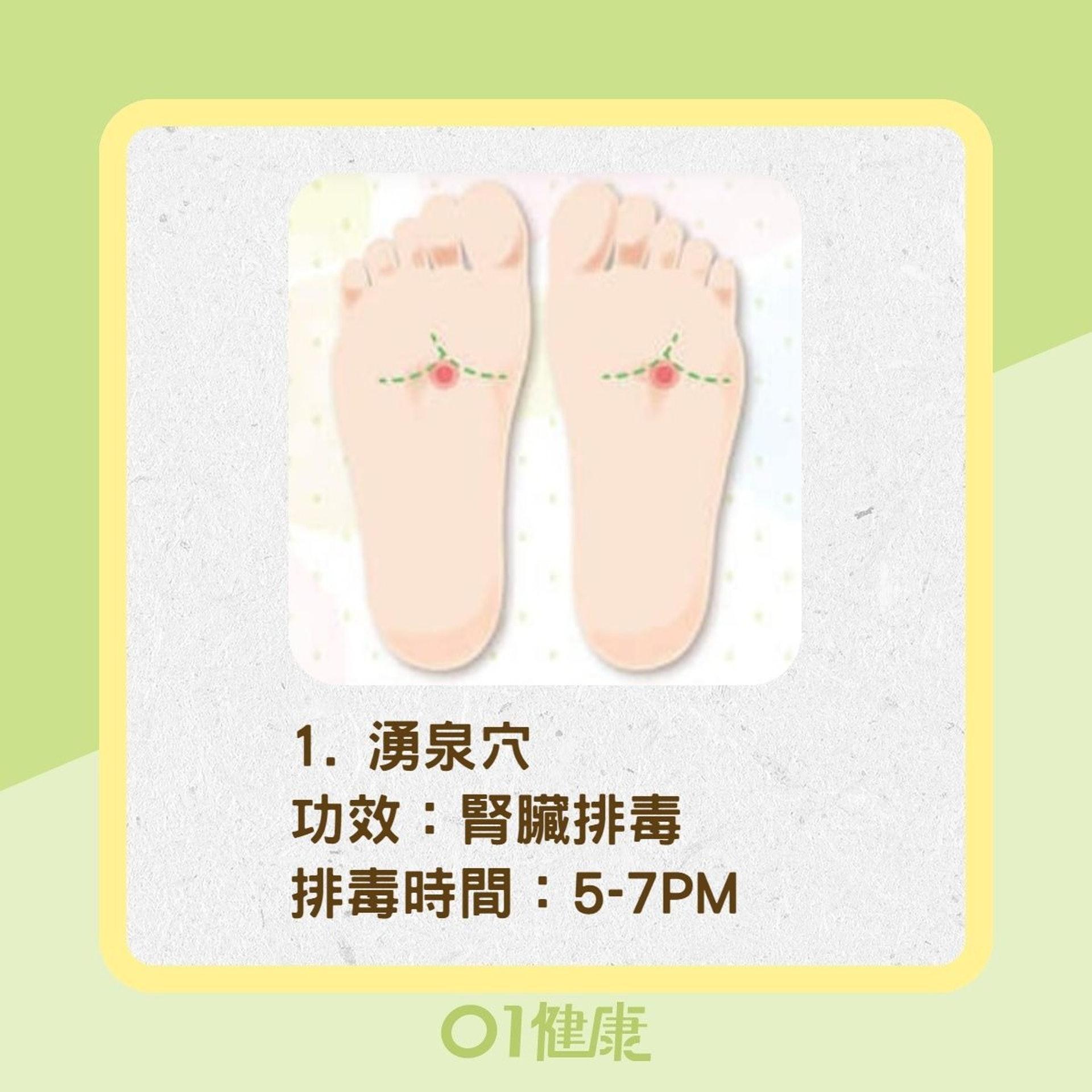人體大器官排毒穴道(01製圖/Heho健康授權使用)