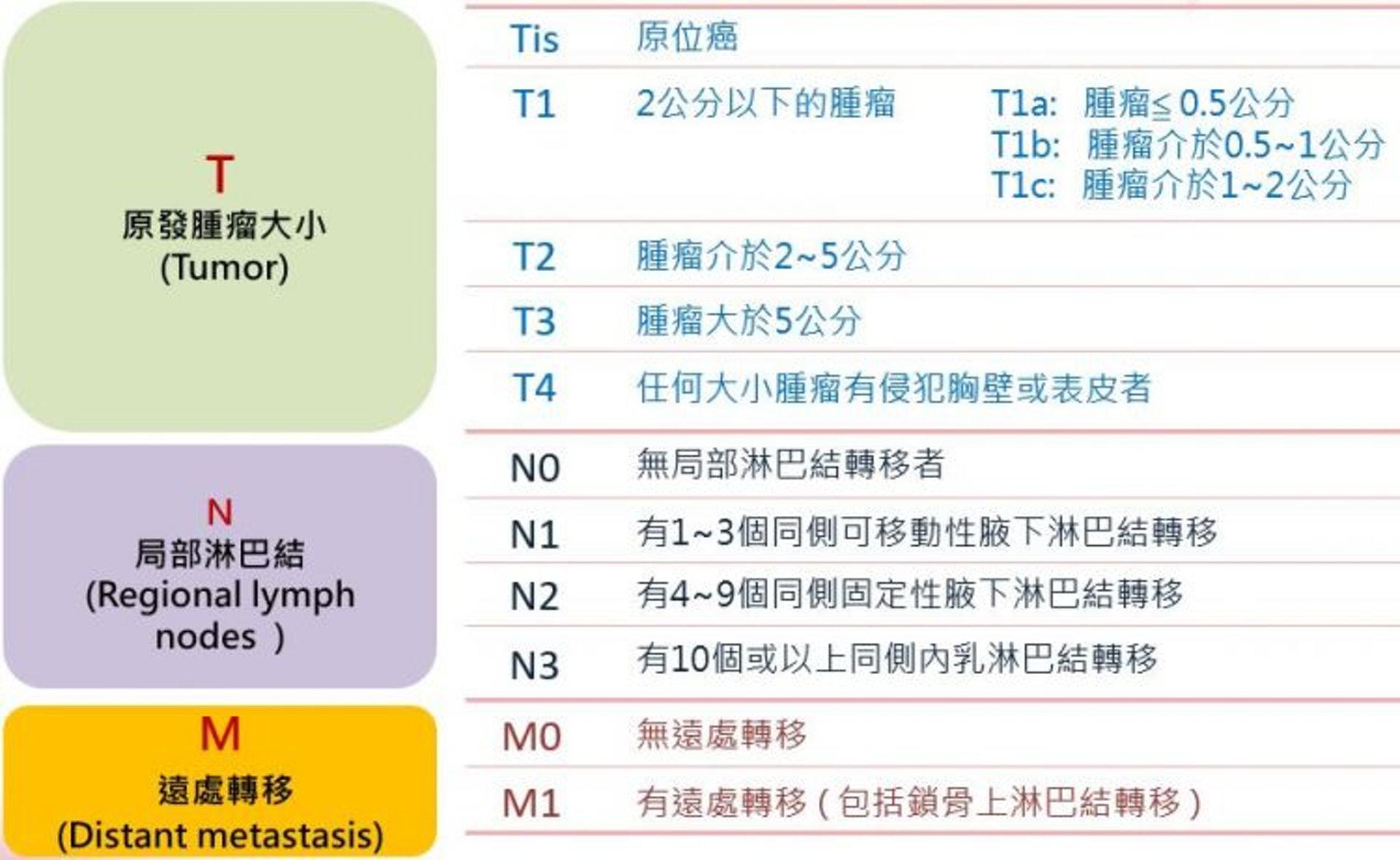 左圖:西醫臨床會按照T、N及M來斷定乳癌期數,包括T(tumour)腫瘤的大小;N(node)淋巴結受影響的幅度;以及M(metastasis) 癌細胞是否有遠端擴散,轉移至其他器官,中醫在醫治乳癌時除了參考上述數據,亦會考慮四個重要的測試指標,分別是ER、PR、HER及Ki-67。(圖片: globalmednew)