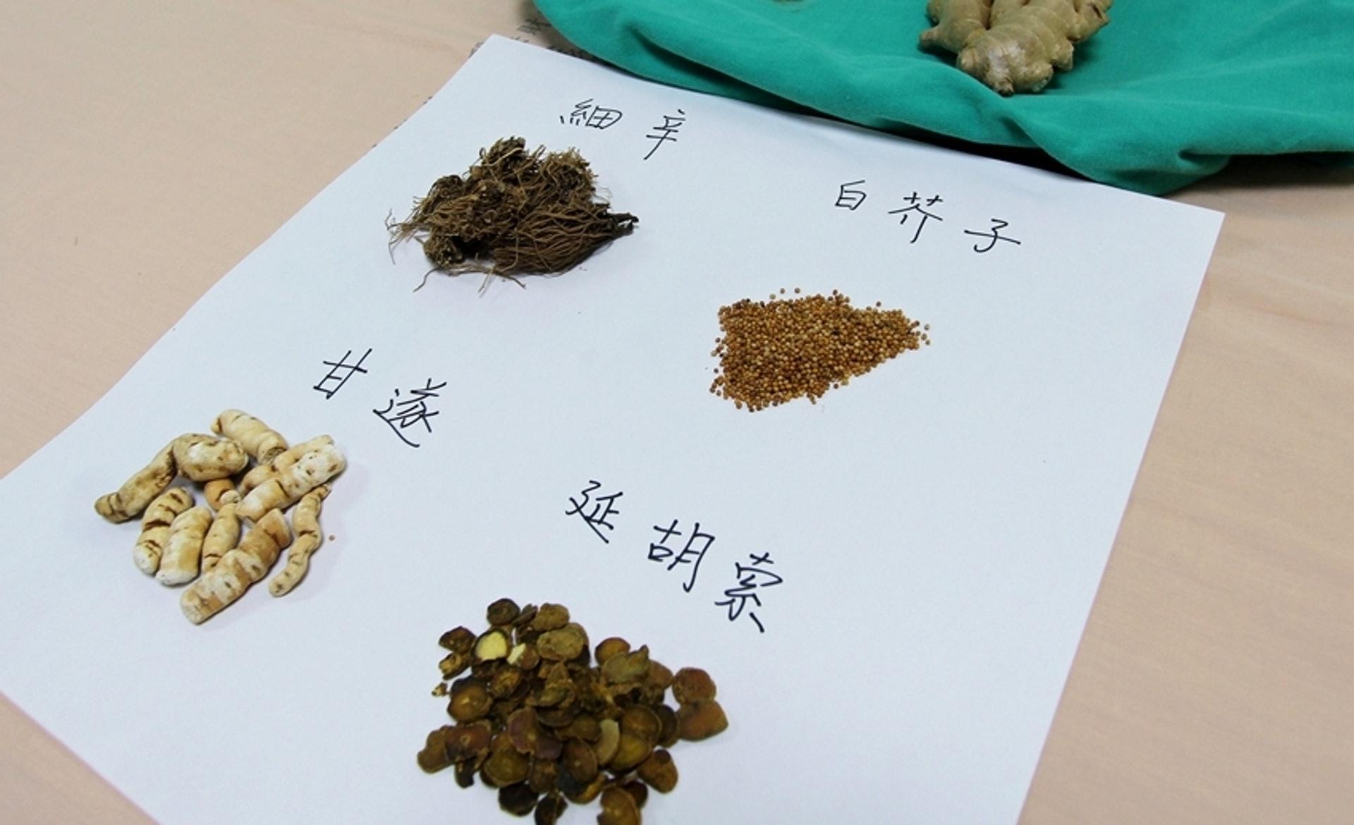天灸常用的中藥包括白芥子、細辛、甘遂、延胡索等。(圖片:health.tvbs)