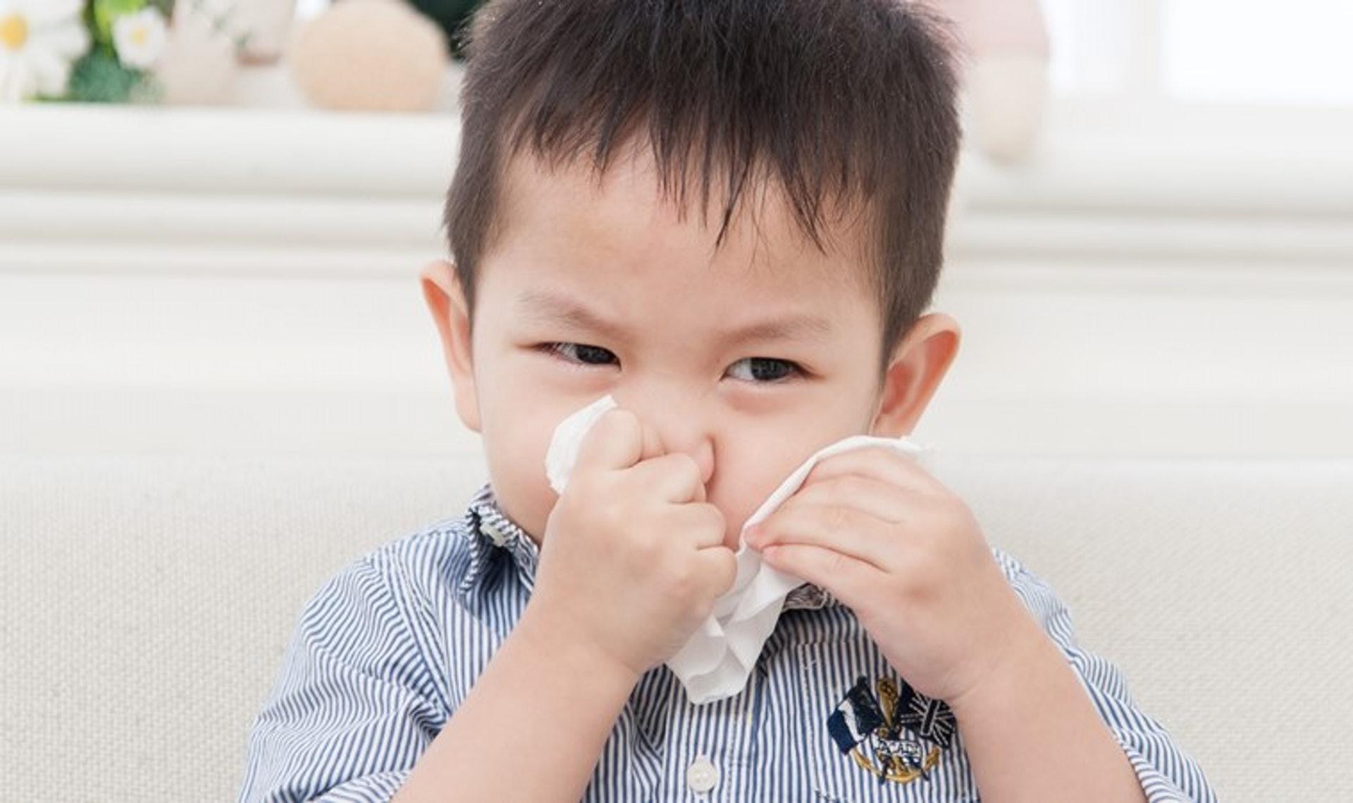 常見的致敏原除了食物,還會存在於周遭環境,例如動物毛屑、昆蟲、花粉、塵蟎等。透過測試,有助家長詳盡了解孩子的過敏成因,並加以提防。(圖片:mababy)