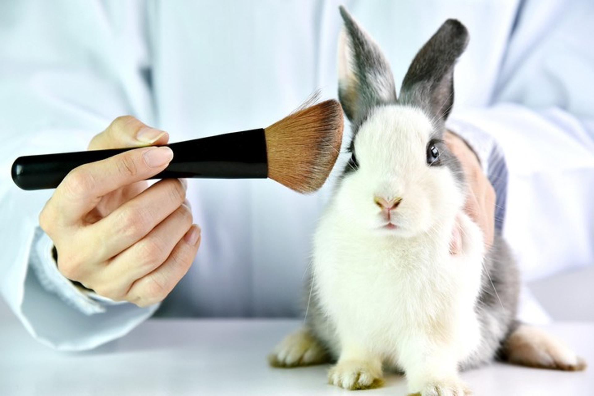 Clean Beauty的產品在生產過程中,需確保不經動物測試。(圖片:Getty Images)