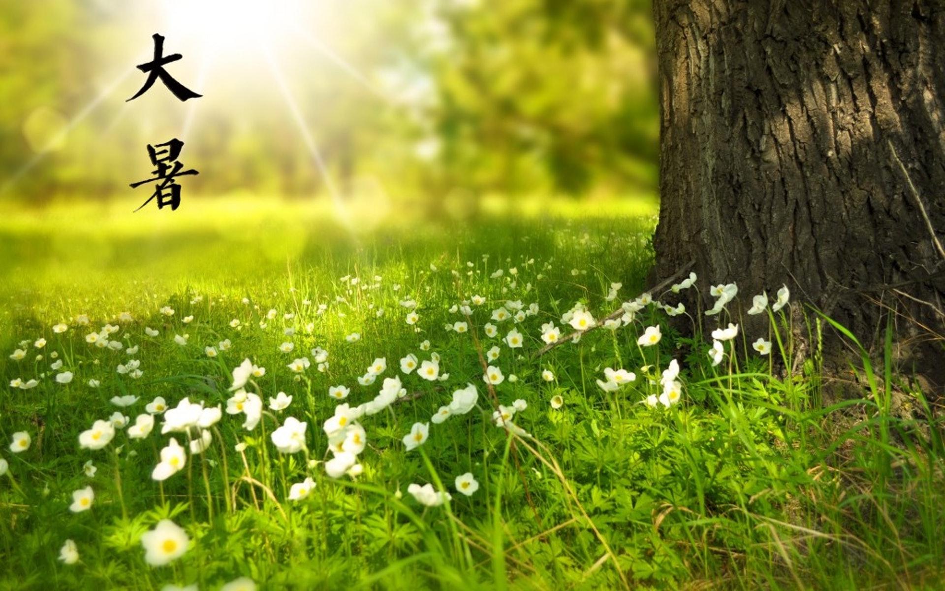 《月令七十二候集解》記載:「暑,熱也,就熱之中分為大小,月初為小,月中為大,今則熱氣猶大也。」可見大暑表示天氣炎熱至極。(圖片:keaitupian)