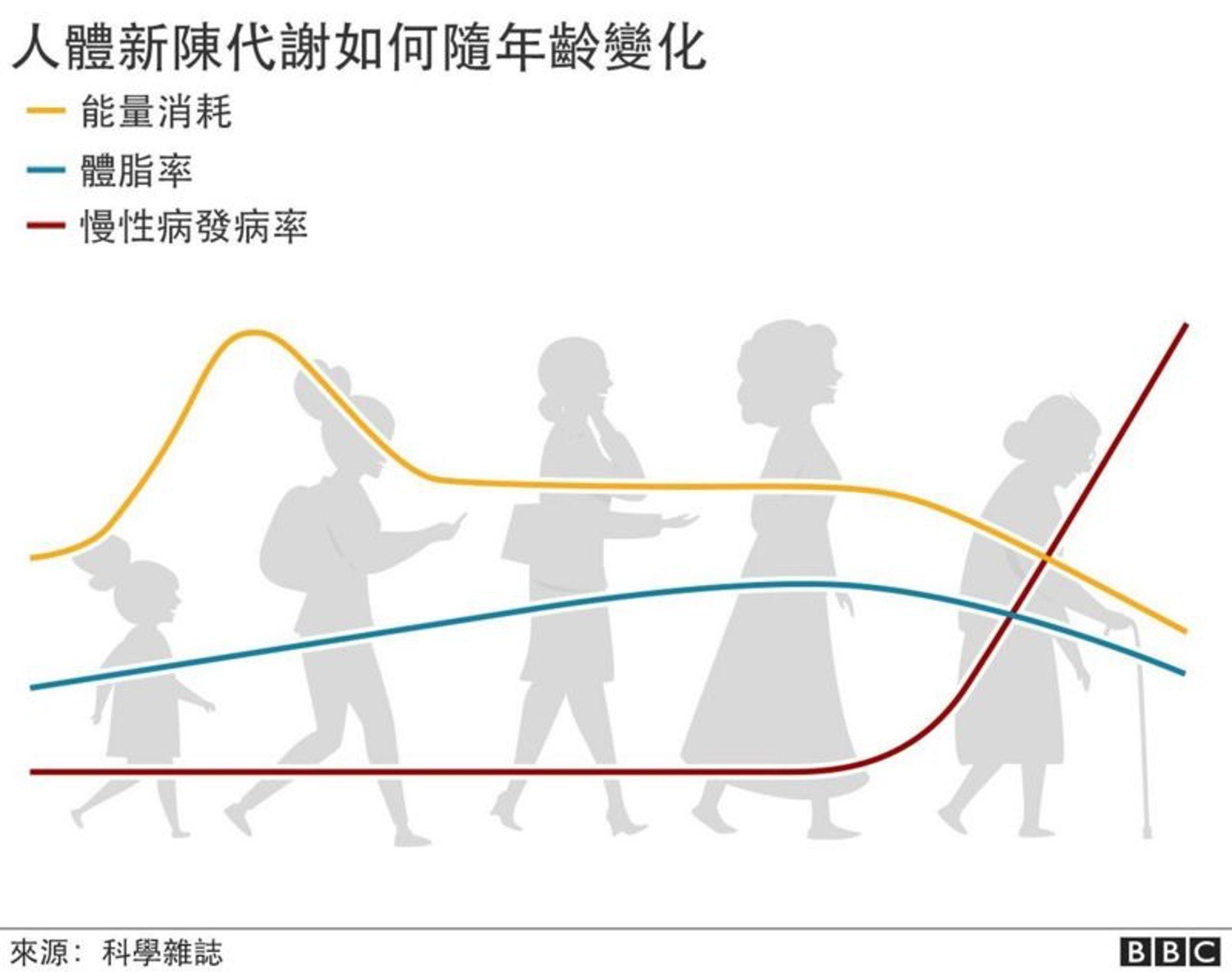 人類新陳代謝的變化依照生命四個不同階段而改變。(圖片:BBC)