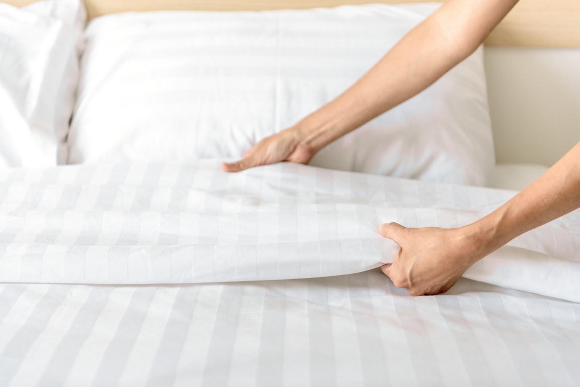 定期更換及清洗床上用品,避免積聚皮屑與灰塵,滋生塵蟎 (圖片: FreePik)