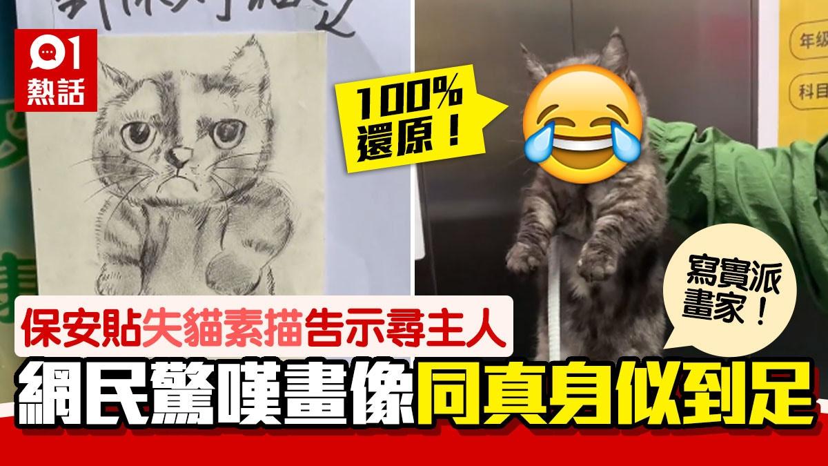 保安拾到失貓 貼畫像告示尋主人 網民見真身秒爆笑:100%神還原