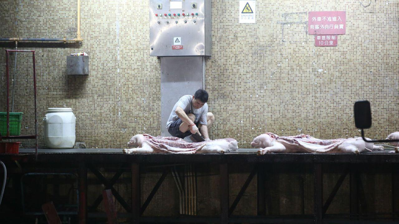 荃灣屠房: 【非洲豬瘟】凌晨直擊荃灣屠房 首批復供鮮豬肉分送五豐行|香港01|突發
