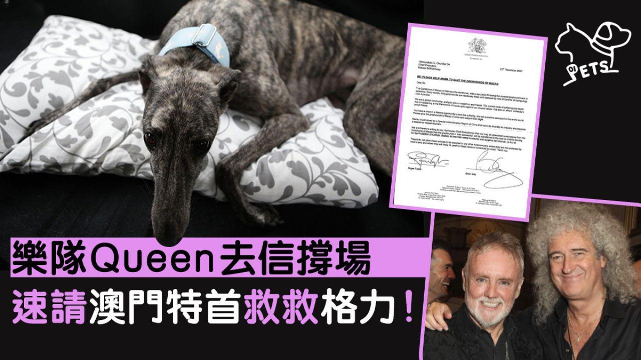 樂隊Queen成員Roger Taylor和Brian May以樂隊名義去信澳門特首,速請接收拯救格力犬方案。(網上圖片)