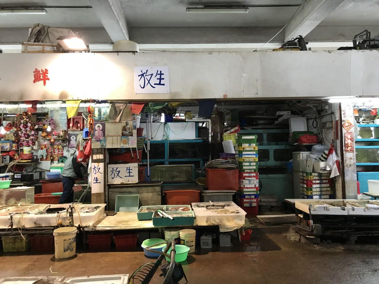 (香港01記者攝)