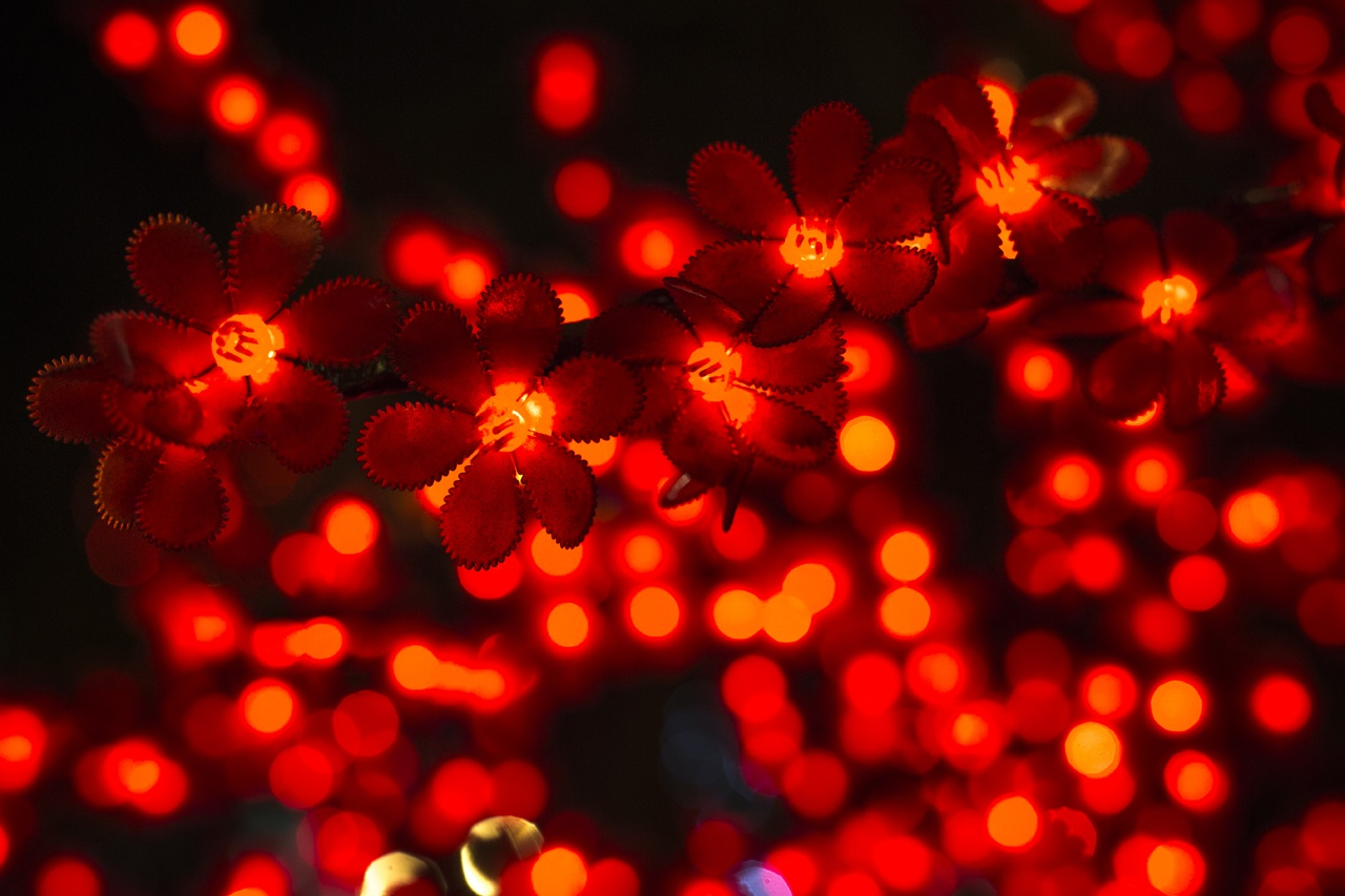 康文署明日(9日)起於新界及九龍舉行綵燈會,讓市民免費欣賞,歡渡元宵佳節。(資料圖片)