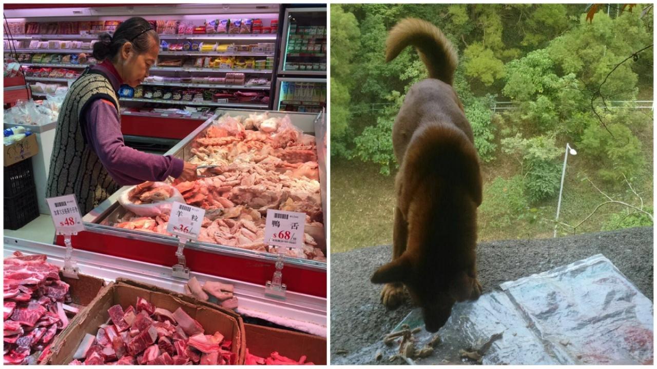 70歲的鄭婆婆日前剛出院,就到超市買雞髀,餵飼流浪狗。(受訪者提供)