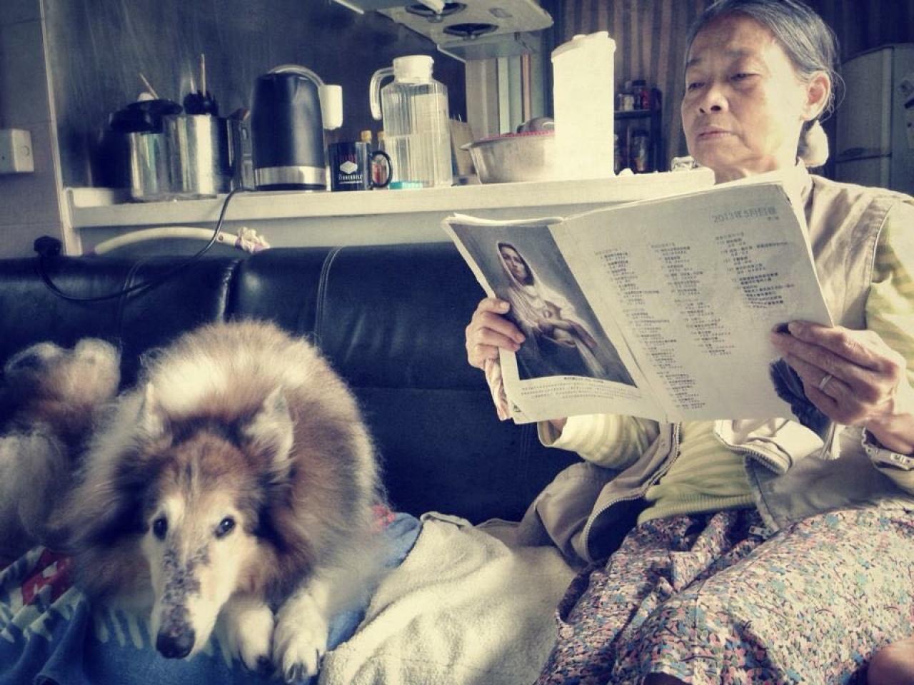 鄭婆婆表示,自己對小動物的感情,是與生俱來,過去亦曾接受親戚棄養的狗隻。(受訪者提供)