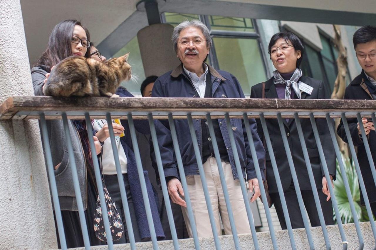 曾俊華早前亦曾對嶺南大學的社區貓表示關注。(曾俊華Facebook)