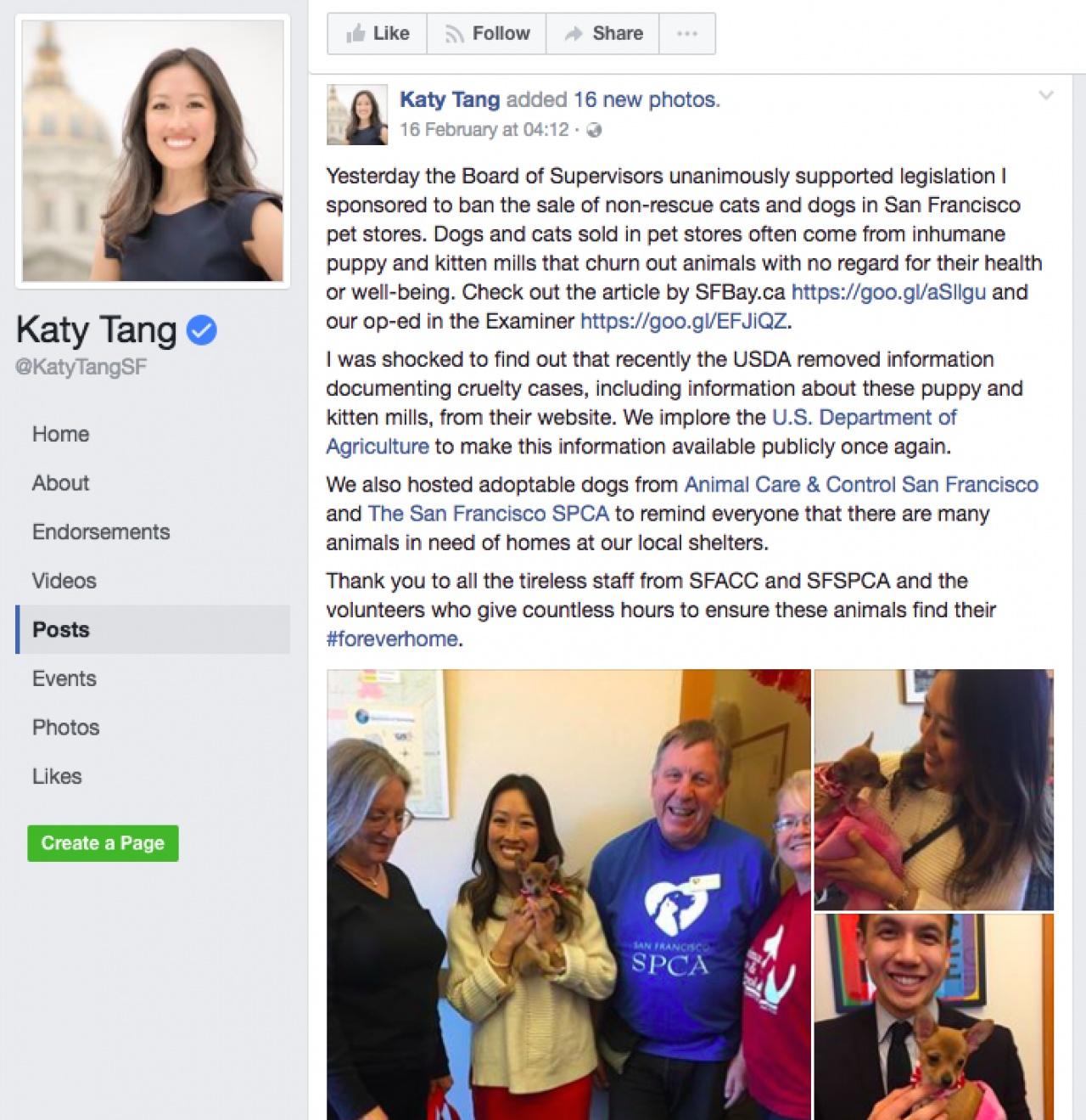Katy Tang以捍衛動物權益為人熟悉,她同時是幾頭小狗的寄養家庭。(Katy Tang Facebook)
