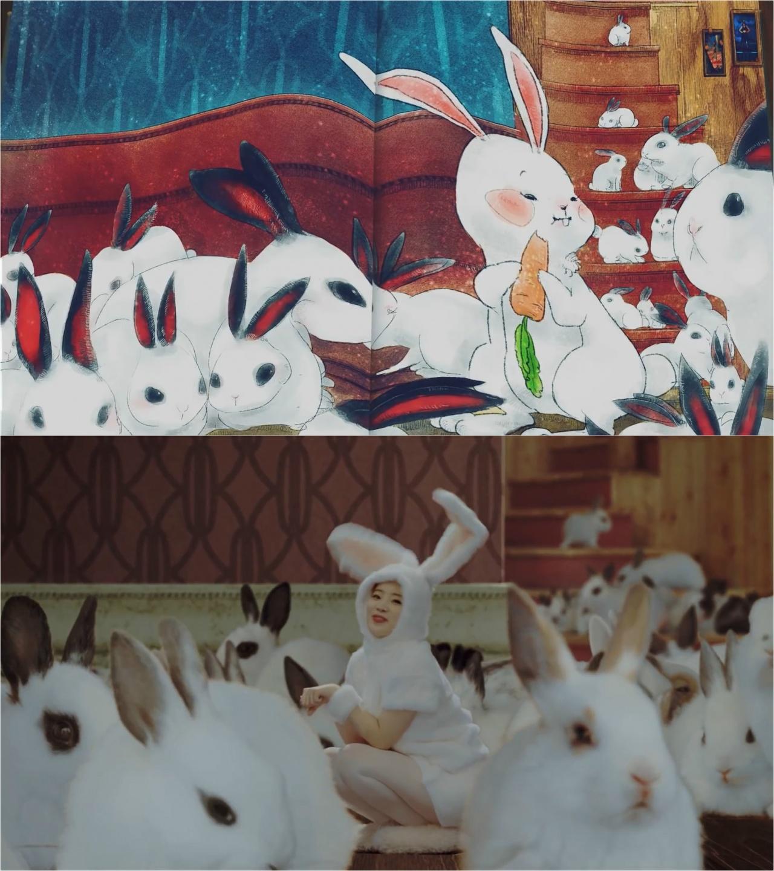 小白兔多賢。(網上截圖)