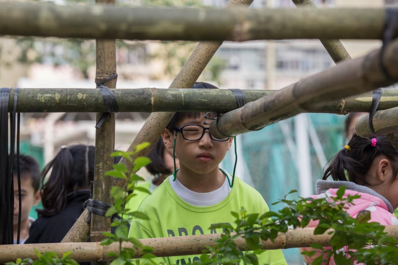 平日甚少接觸竹子,到底內裏有什麼的呢?(張浩維攝)