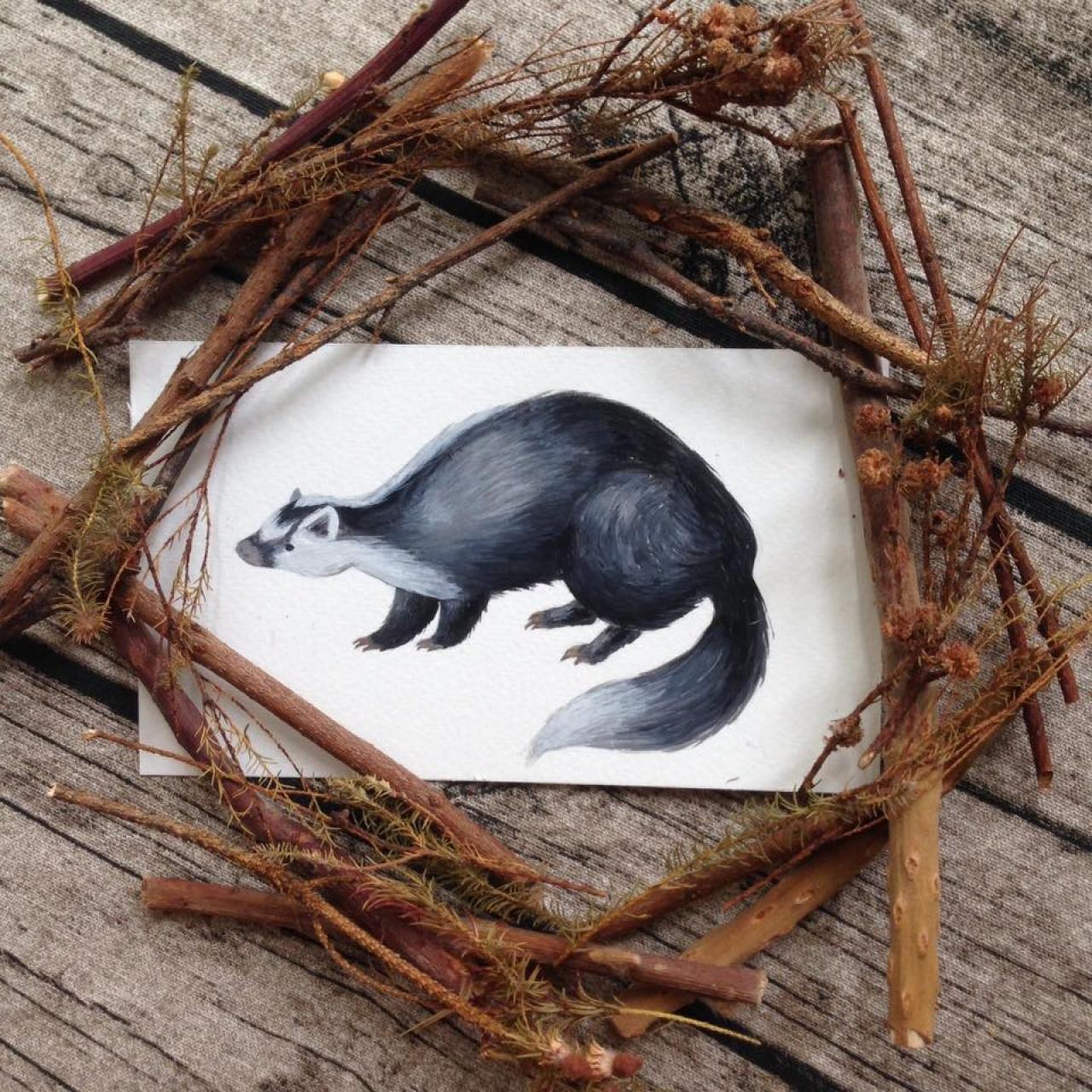 「香港也有很多野生動物,我把本地有的野生哺乳類也畫了一遍。」(受訪者提供)
