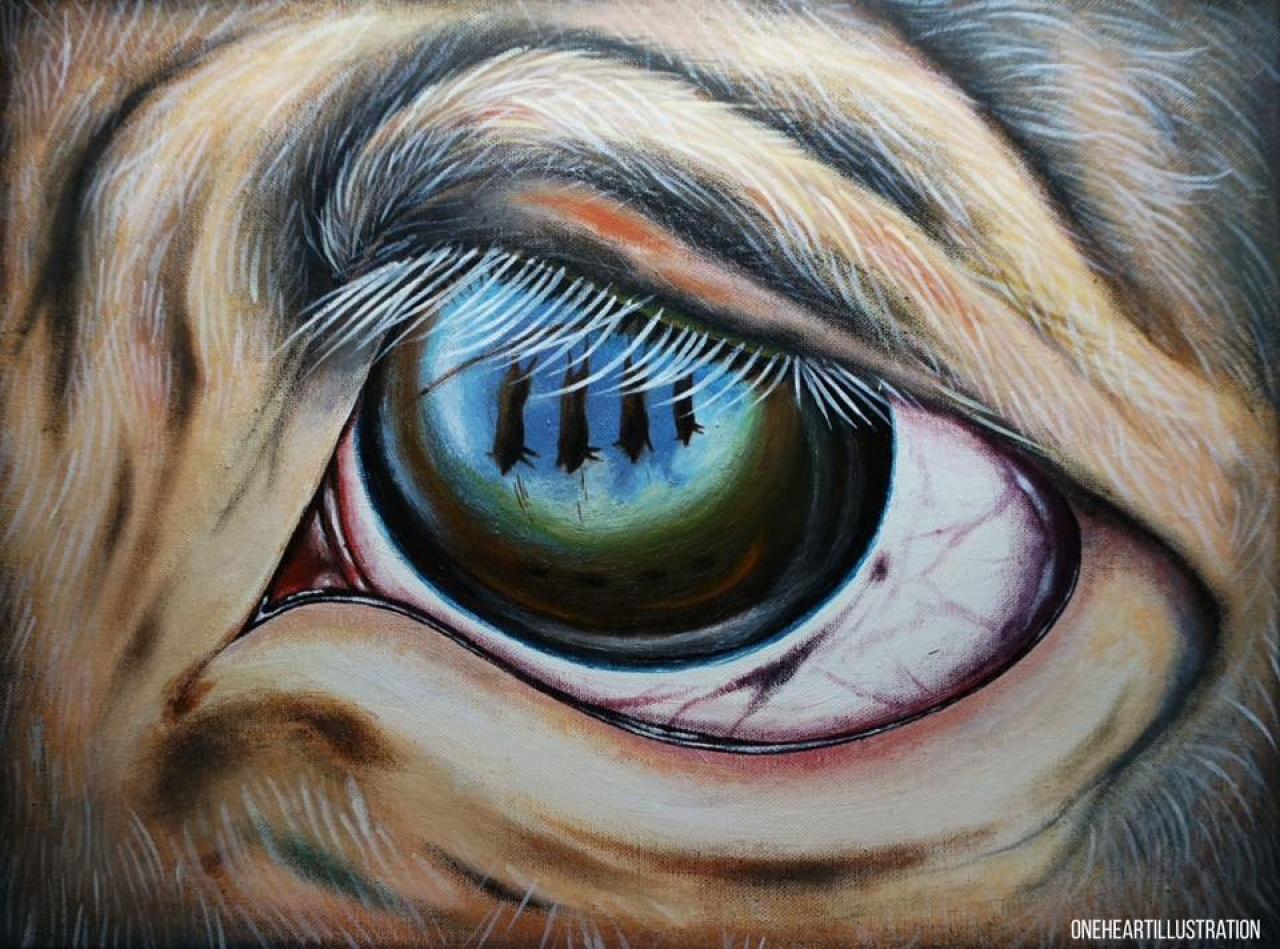 初時一芯的畫風較為傷感、黑暗,例如這幅豬眼中反映同伴被殺的情景。(受訪者提供)