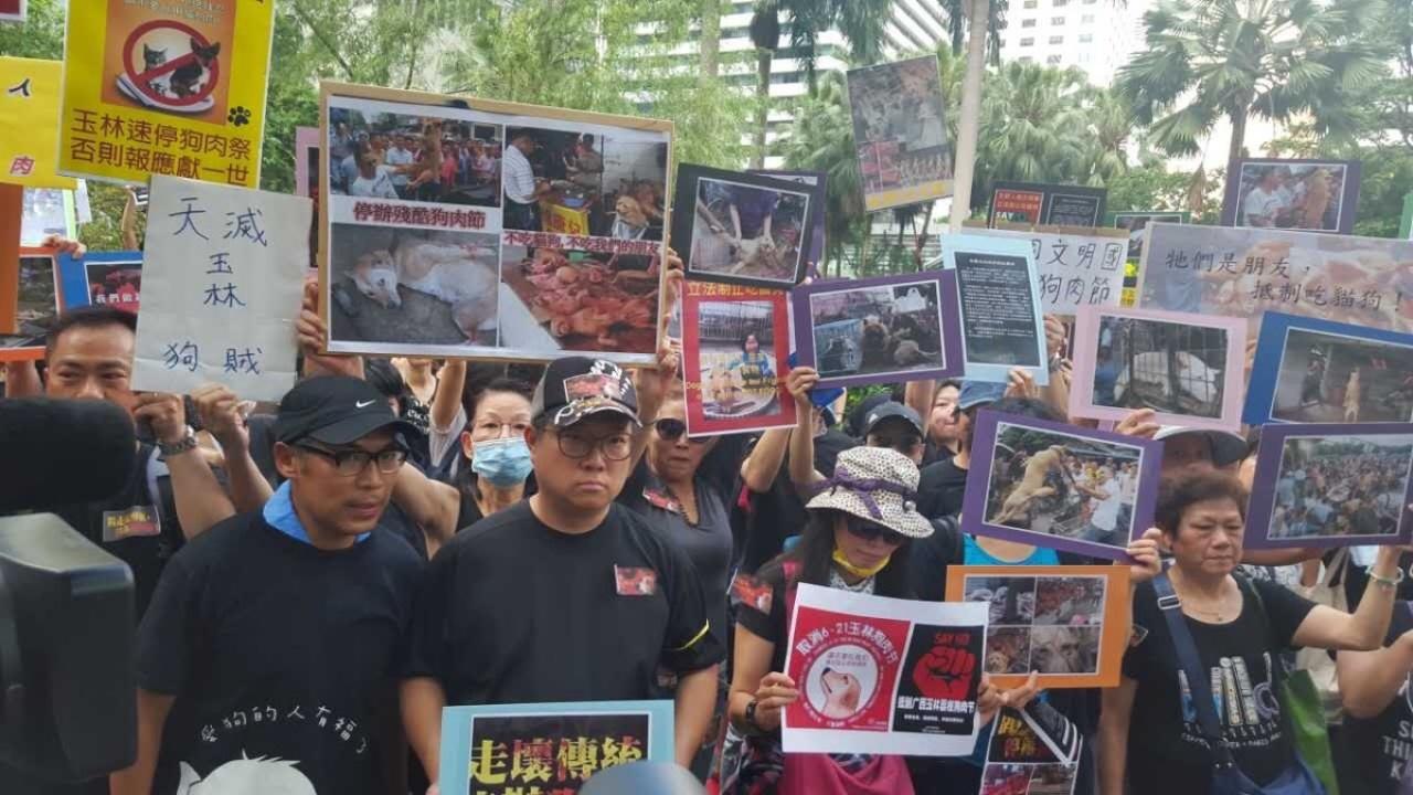 香港千名市民遊行,要求內地停辦狗肉節。(資料圖片 / 梁鵬威攝)
