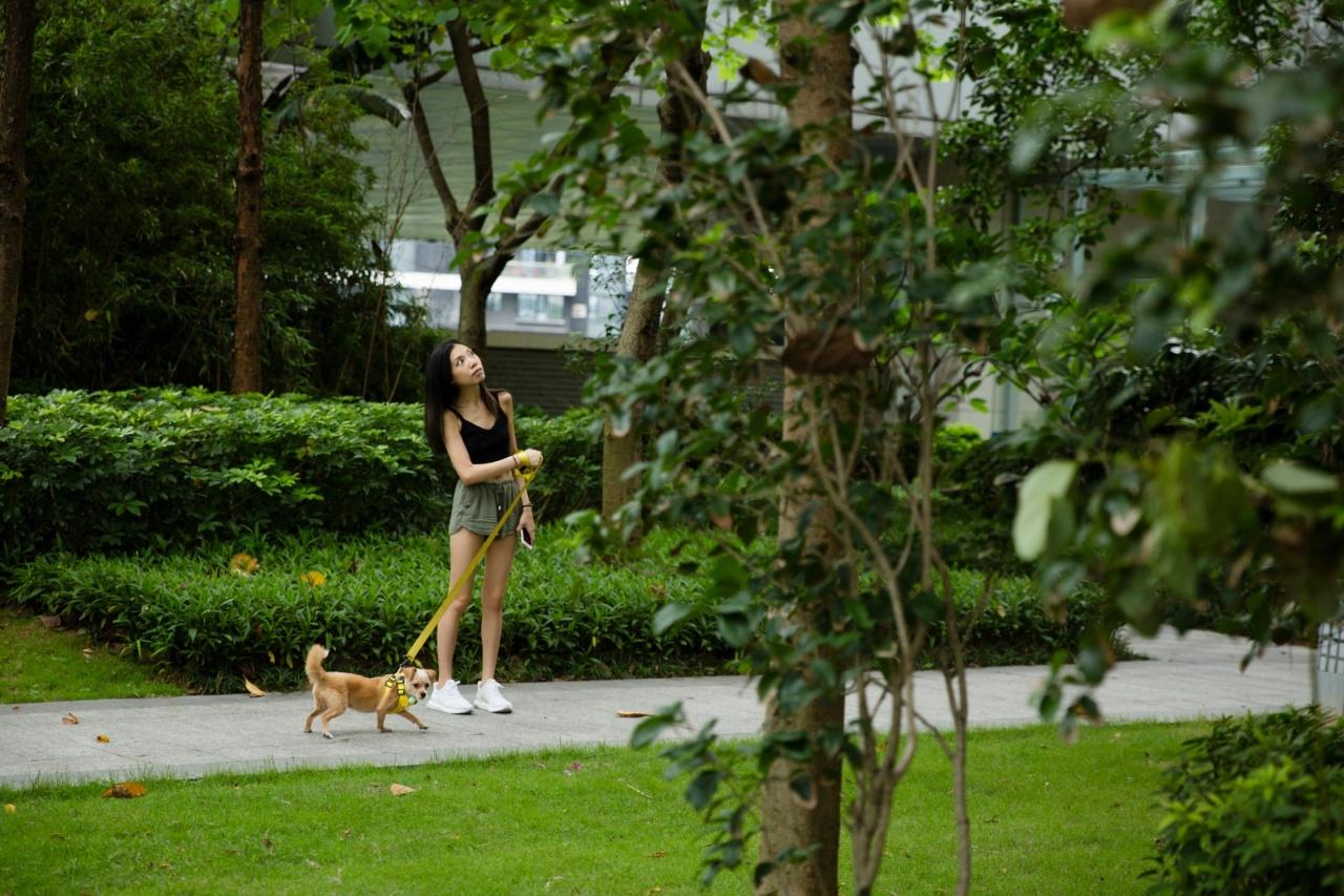JoJo住的地區較為富裕,大多屋苑都設空中平台,同樣可帶狗狗內進散步。(黃寶瑩攝)