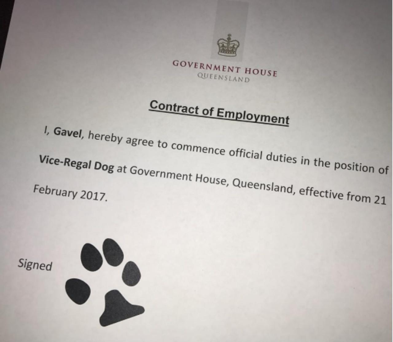 恭喜晒呀!呢份工真係好啱狗狗。Gravel 個簽名簡直一流!(qldgovernor IG)